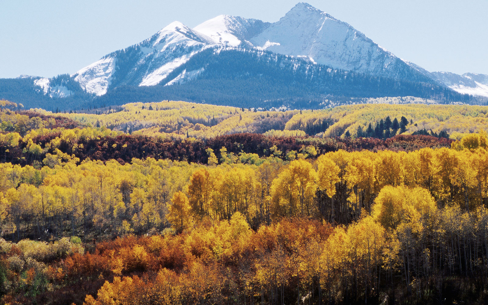 America's Best Fall Color Drives: West Elk Loop Scenic & Historic Byway, Gunnison-Crested Butte, CO
