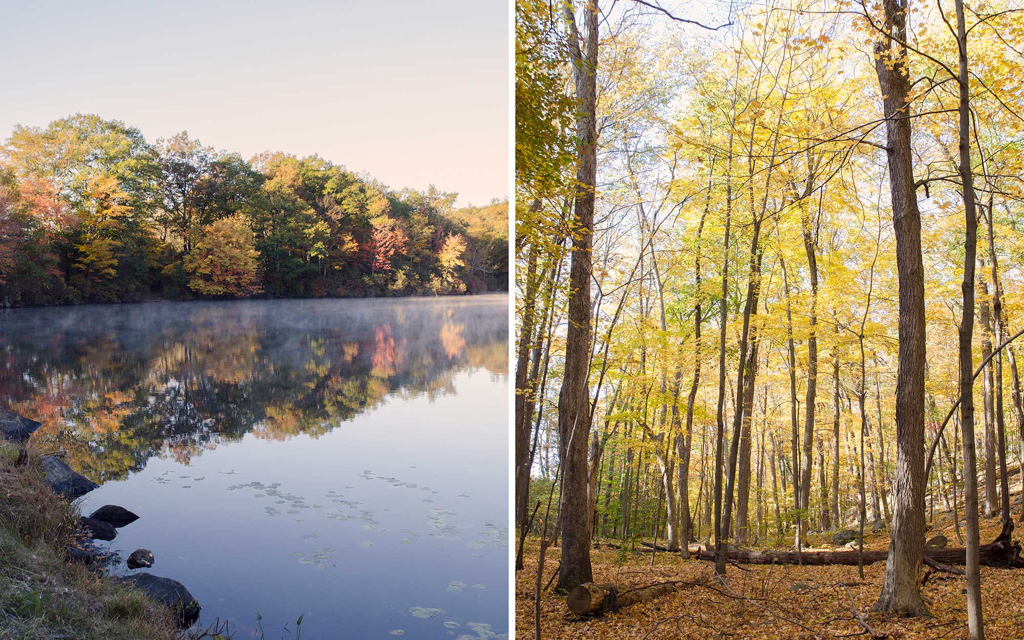 A Perfect Fall Day in the Hudson River Valley