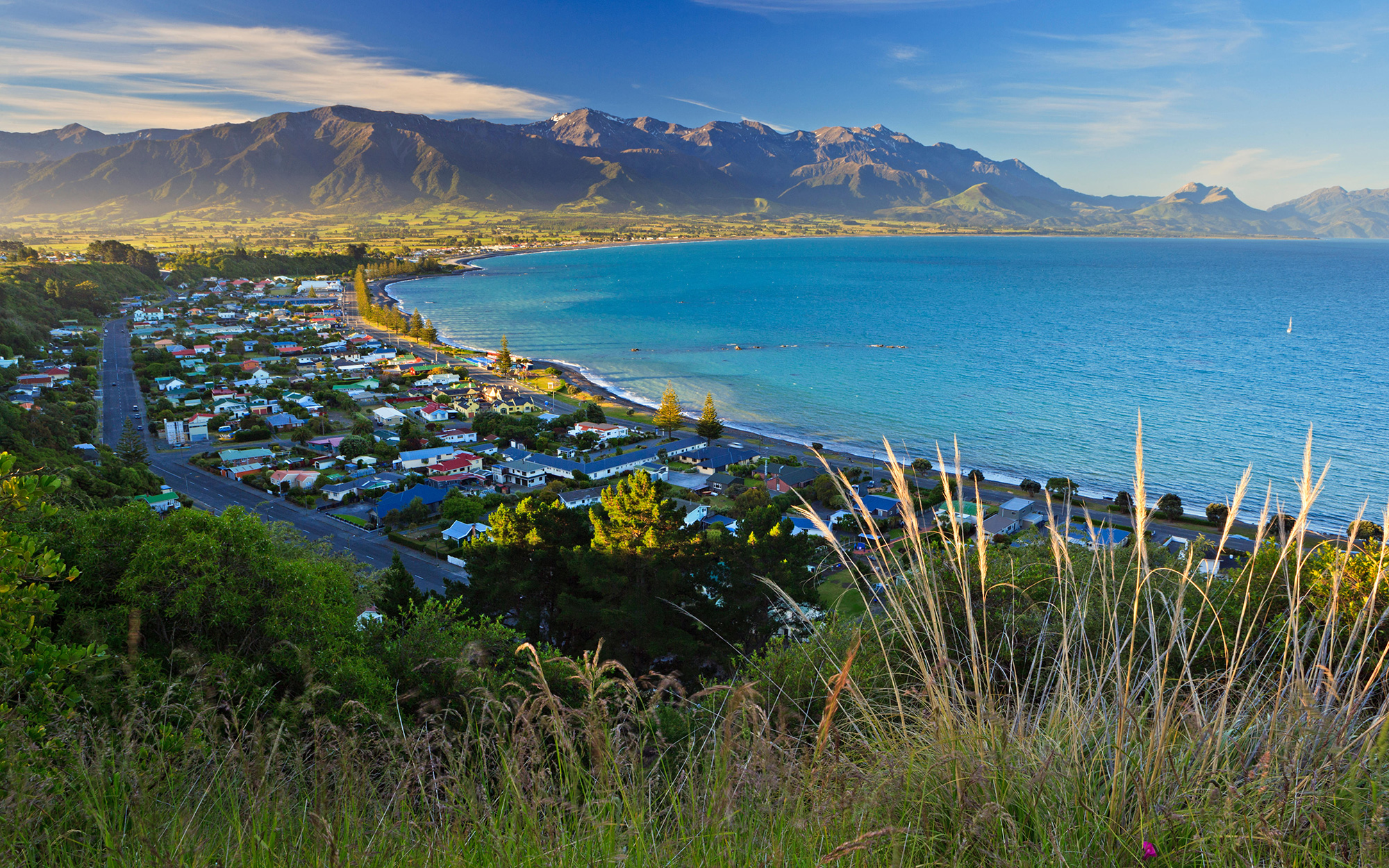Best Places to Spend Christmas: Kaikoura, New Zealand