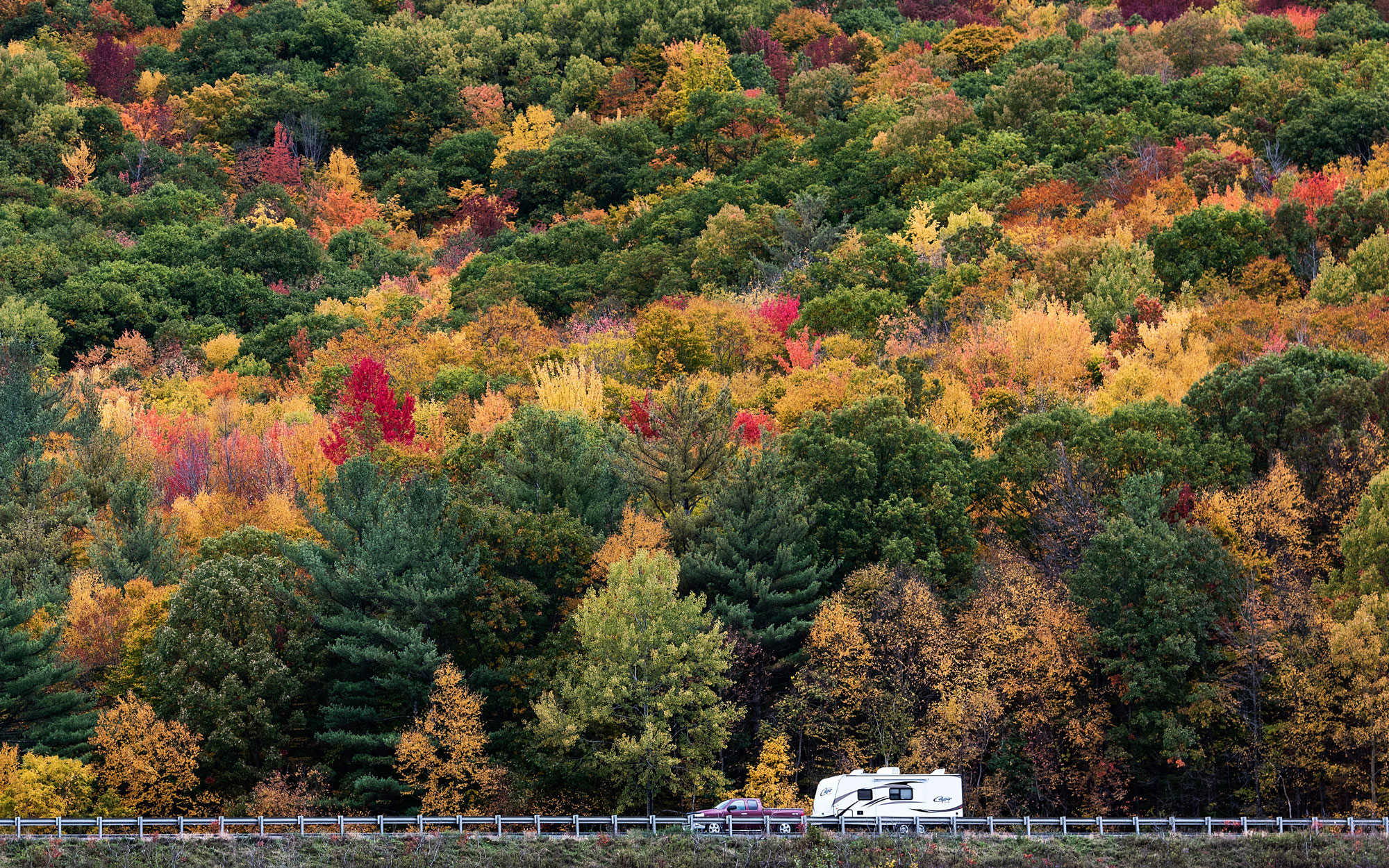 Survive Thanksgiving Travel Drive Fall