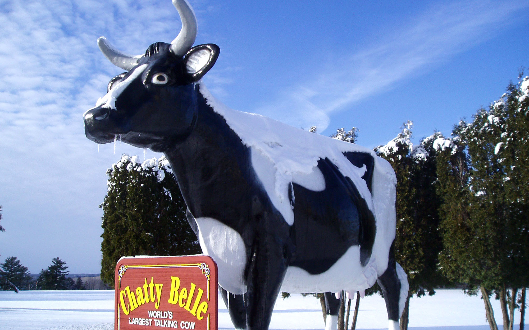 Weirdest Roadside Attractions: Wisconsin: Chatty Belle, World's Largest Talking Cow