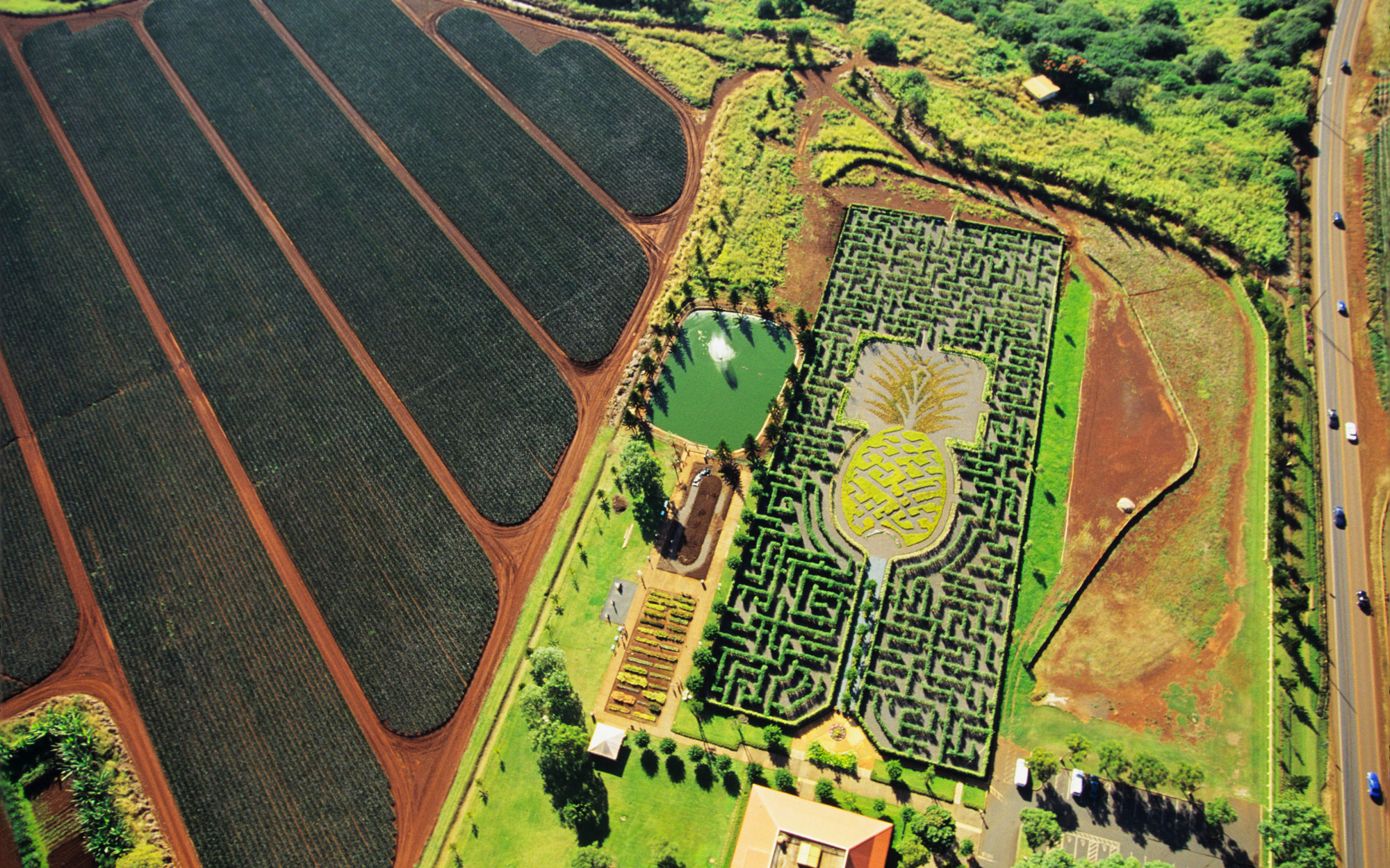 Weirdest Roadside Attractions: Hawaii: World's Longest Plant Maze