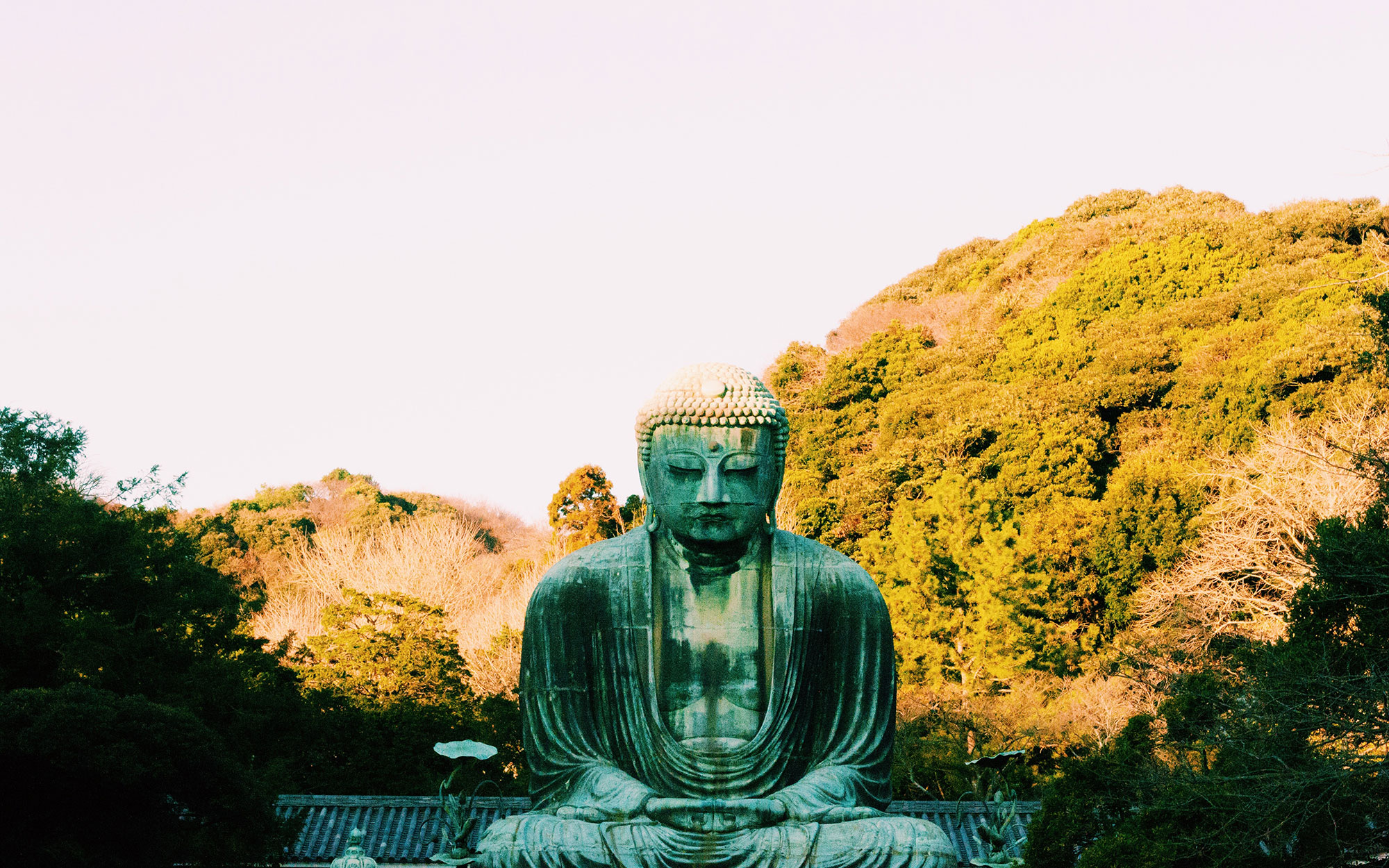 Japanese Temples - The Great Buddha Statue