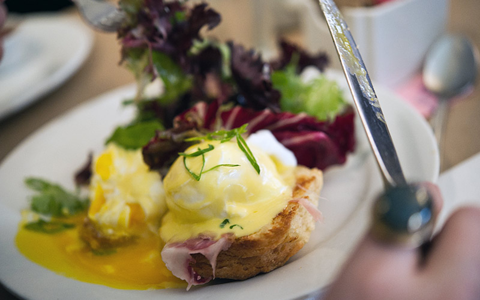 Best Brunch Spots in NYC: Buttermilk Channel