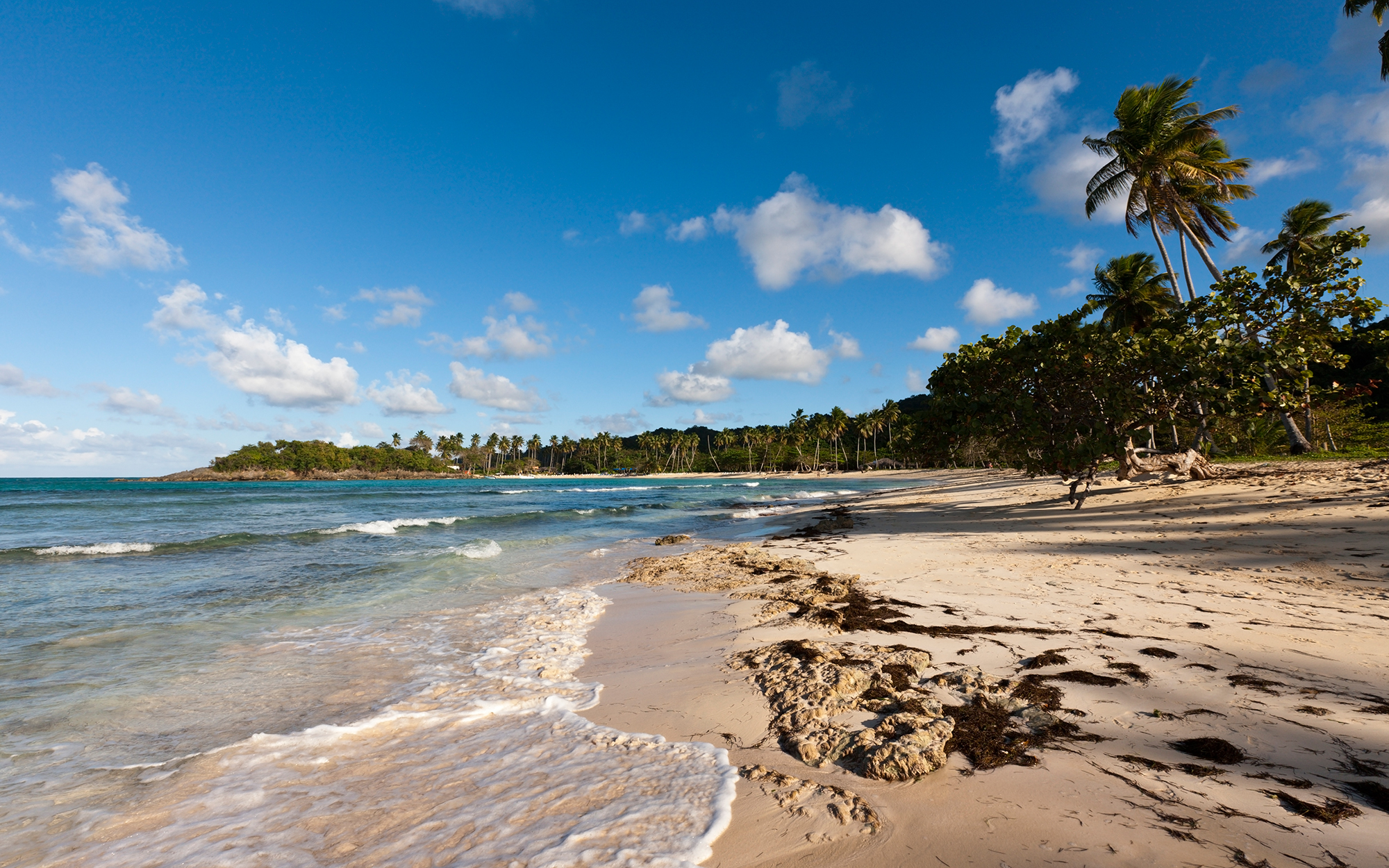 Best Beaches in the Dominican Republic: Playa Rincon
