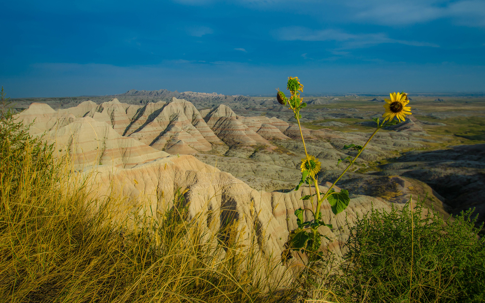 A National Park for Every Type of Traveler: Badlands, South Dakota