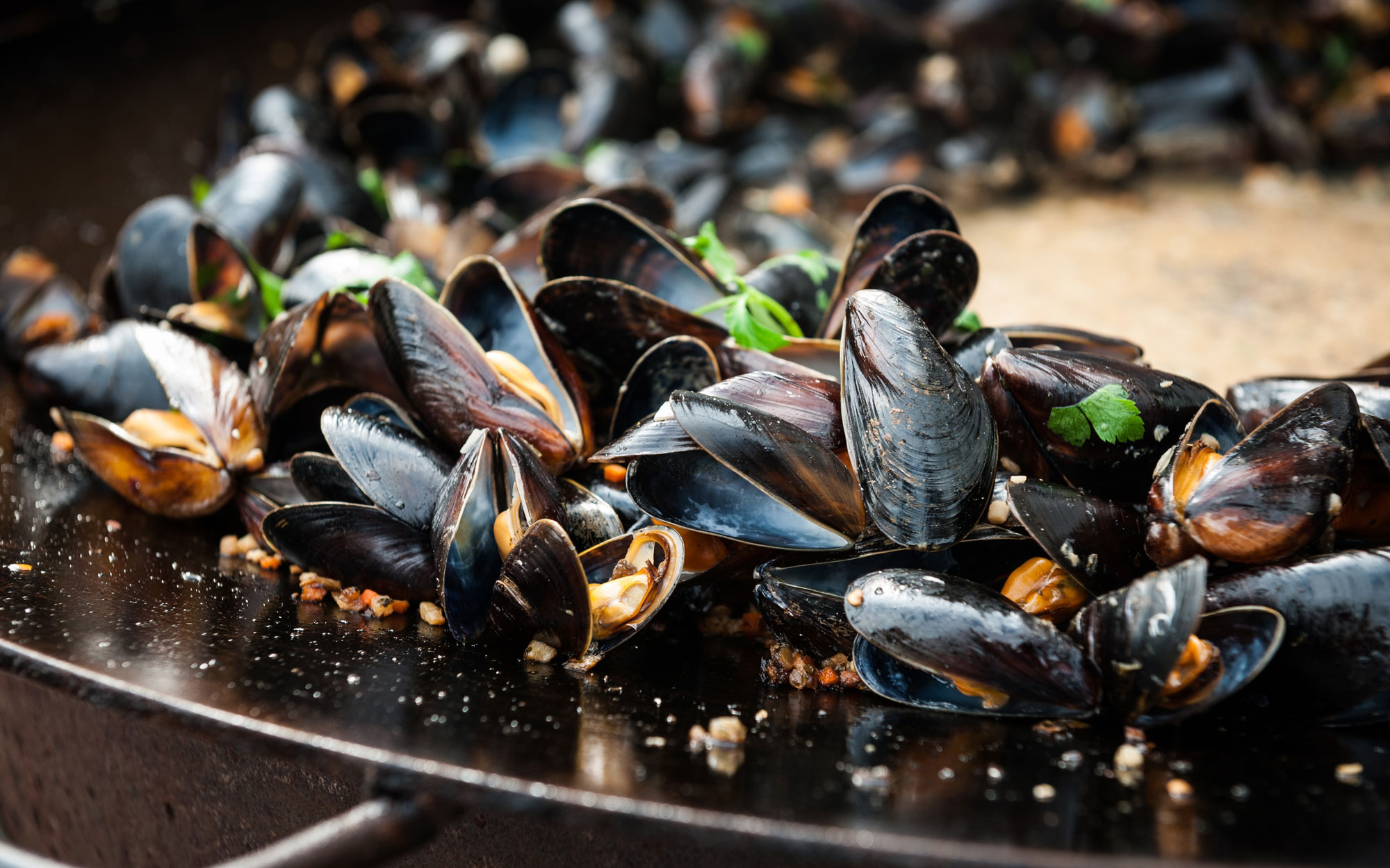 Mussels Sweden