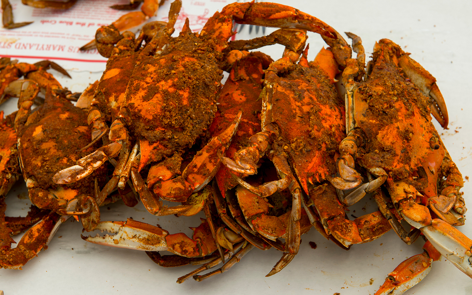 MARYLAND, UNITED STATES - 2014/08/02: Maryland Blue Crabs at the Crab Claw Restaurant at the Inner Harbor of St. Michaels, a historic town in Maryland, USA, situated on Chesapeake Bay. (Photo by Wolfgang Kaehler/LightRocket via Getty Images)