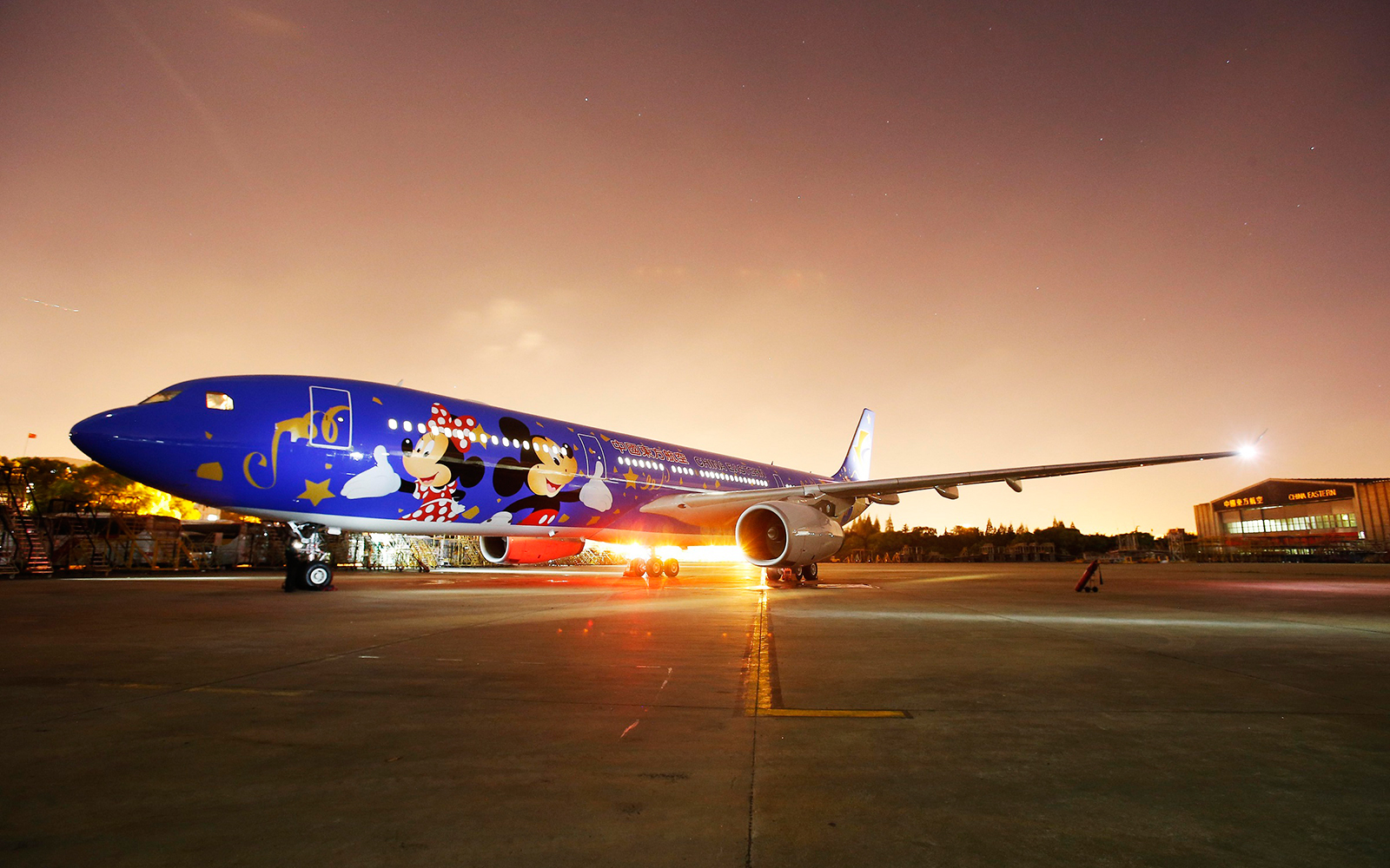 Shanghai Disney Resort airplane