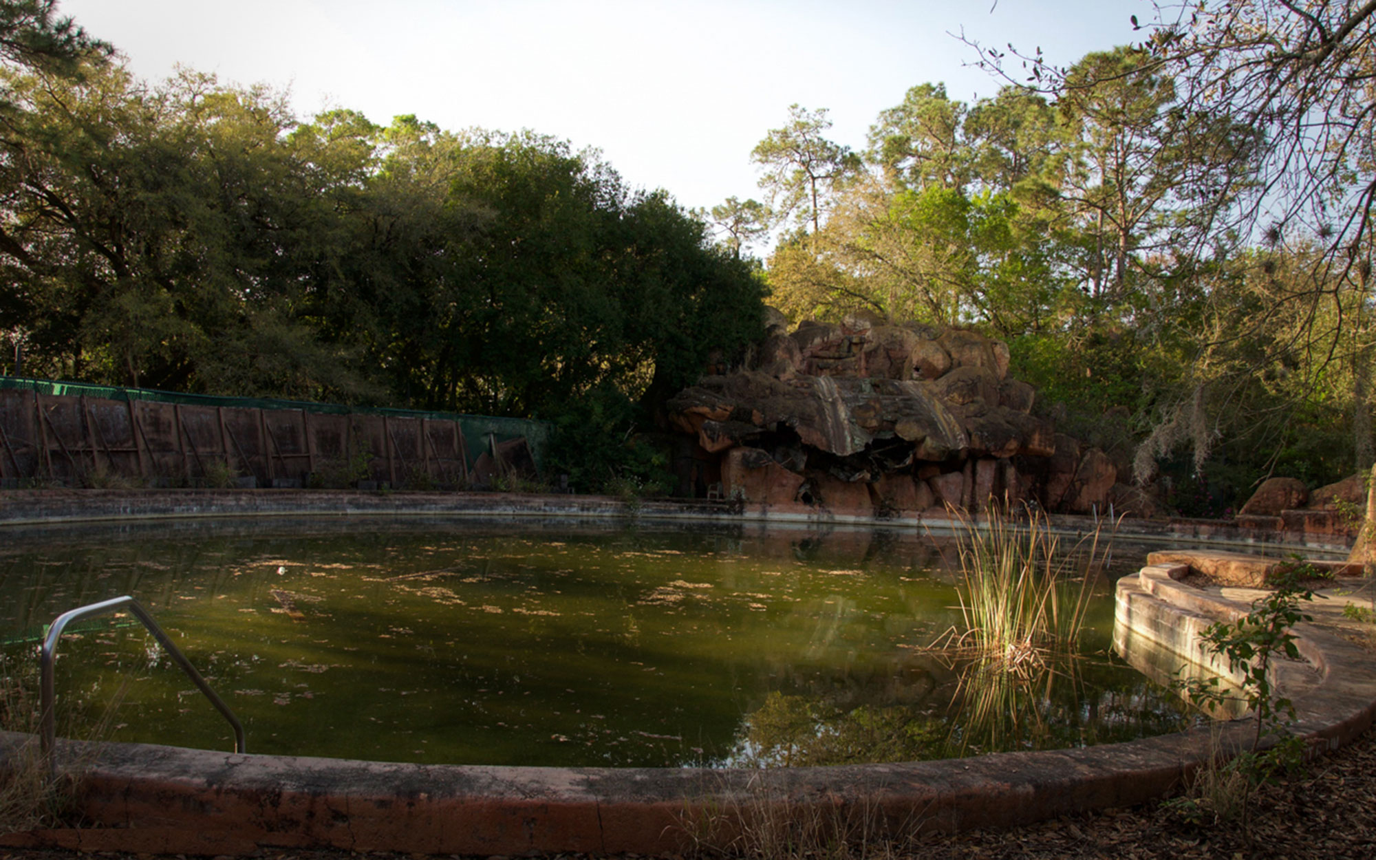 Disney River Country - Overgrown Pool