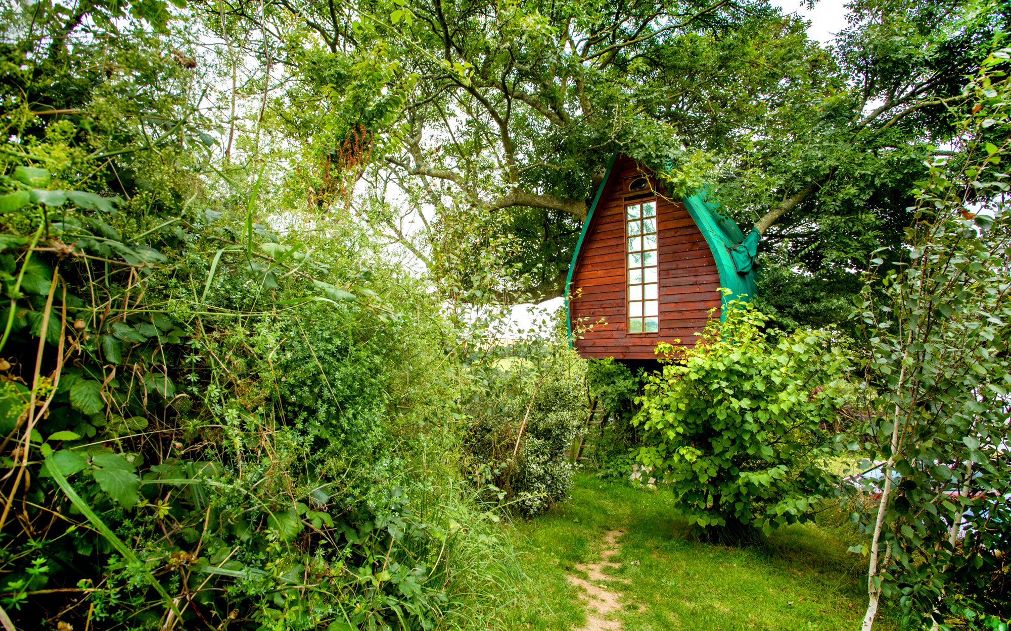 Treehouse Cornwall