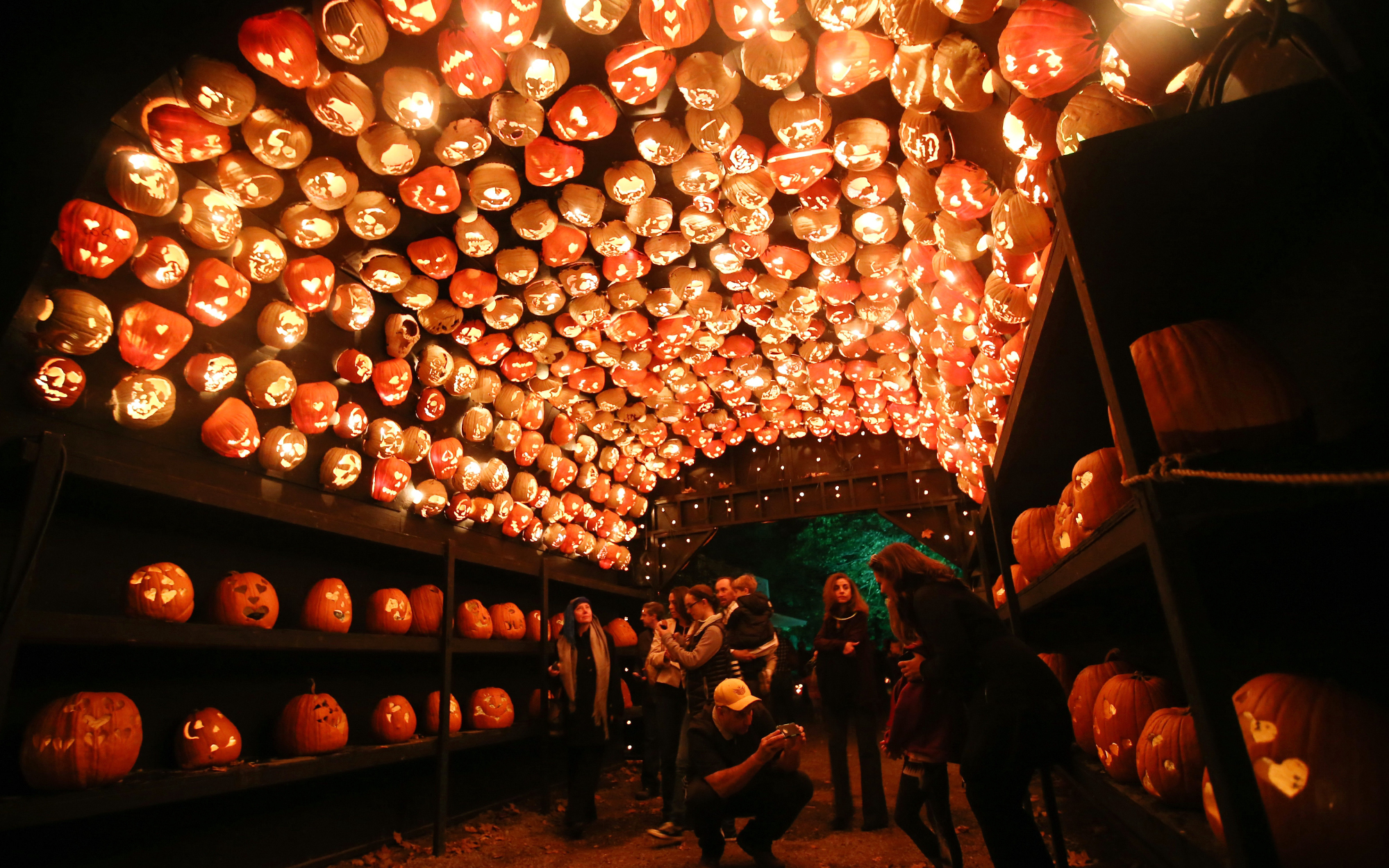 The Great Jack O'Lantern Blaze in Croton-on-Hudson,  New York