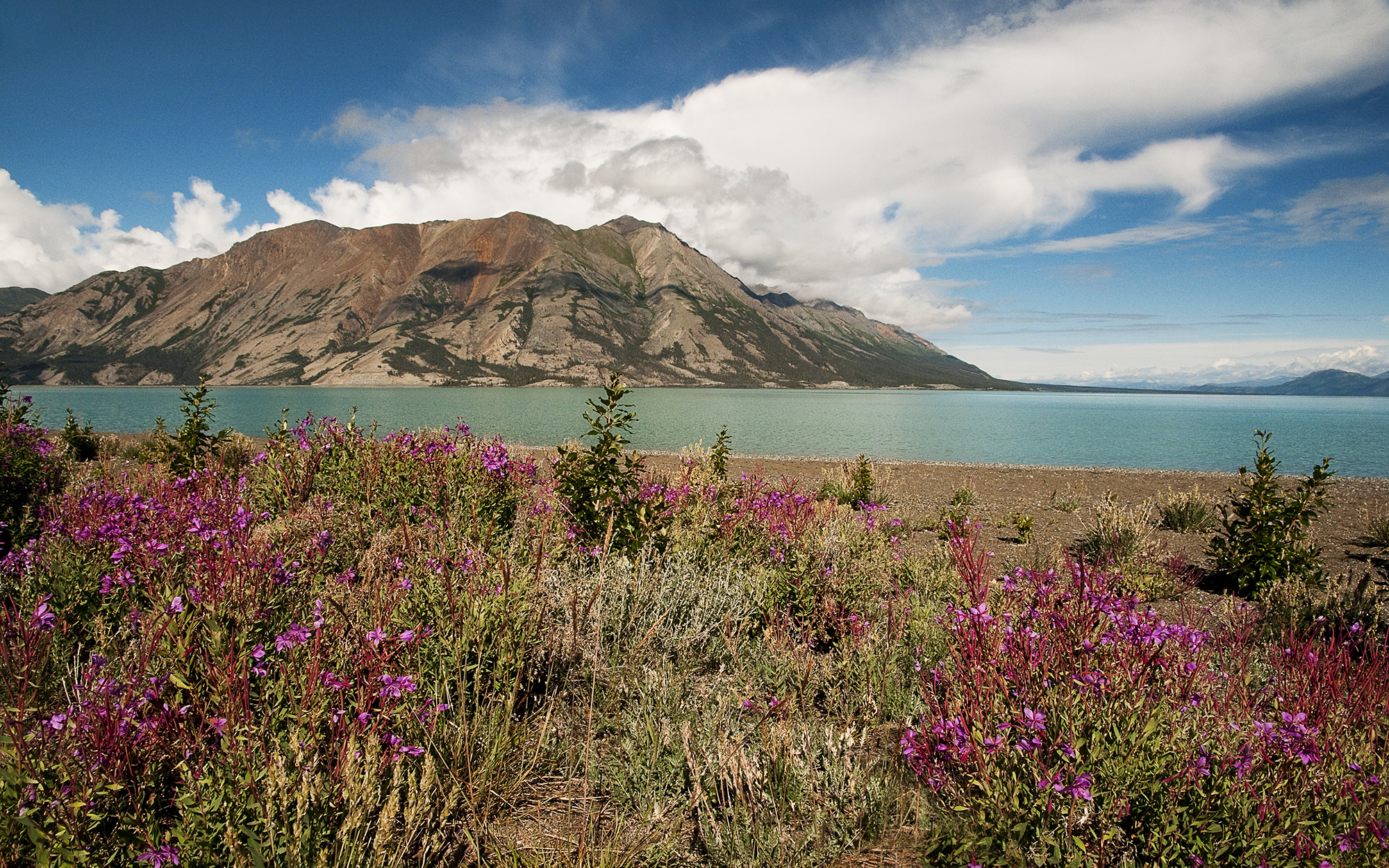 Kluane National Park in Yukon Territory