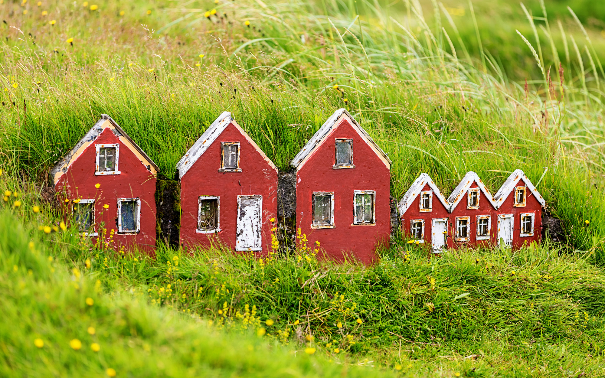Elf-Community-Grass-House-ICELAND0816.jpg