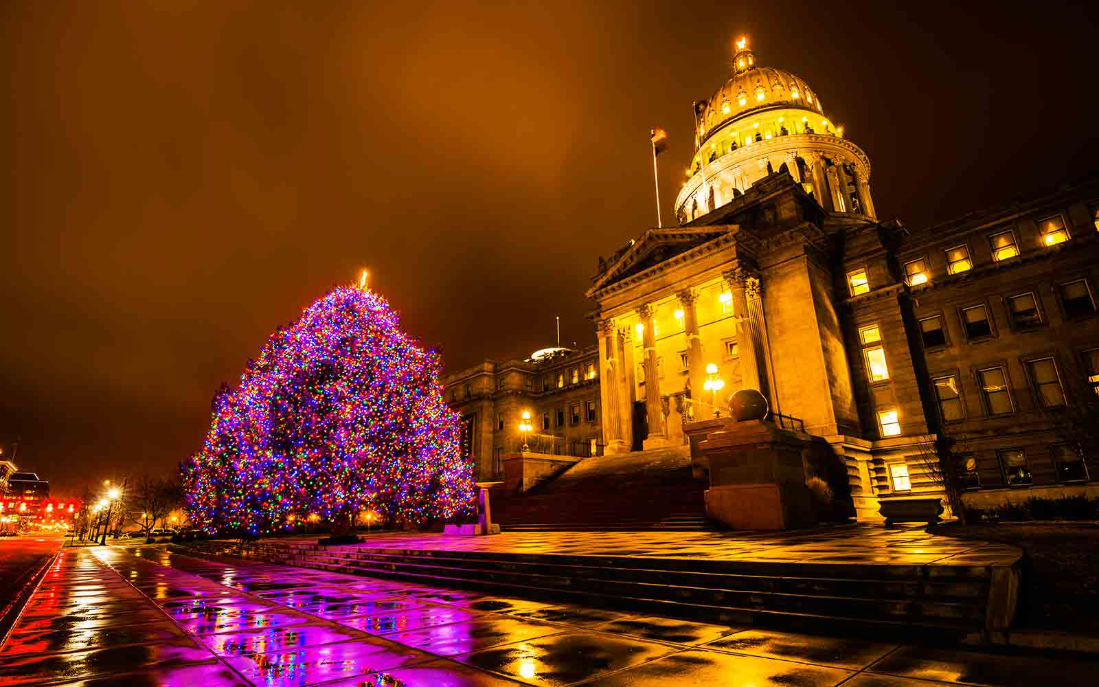 Best Christmas Tree in Every State