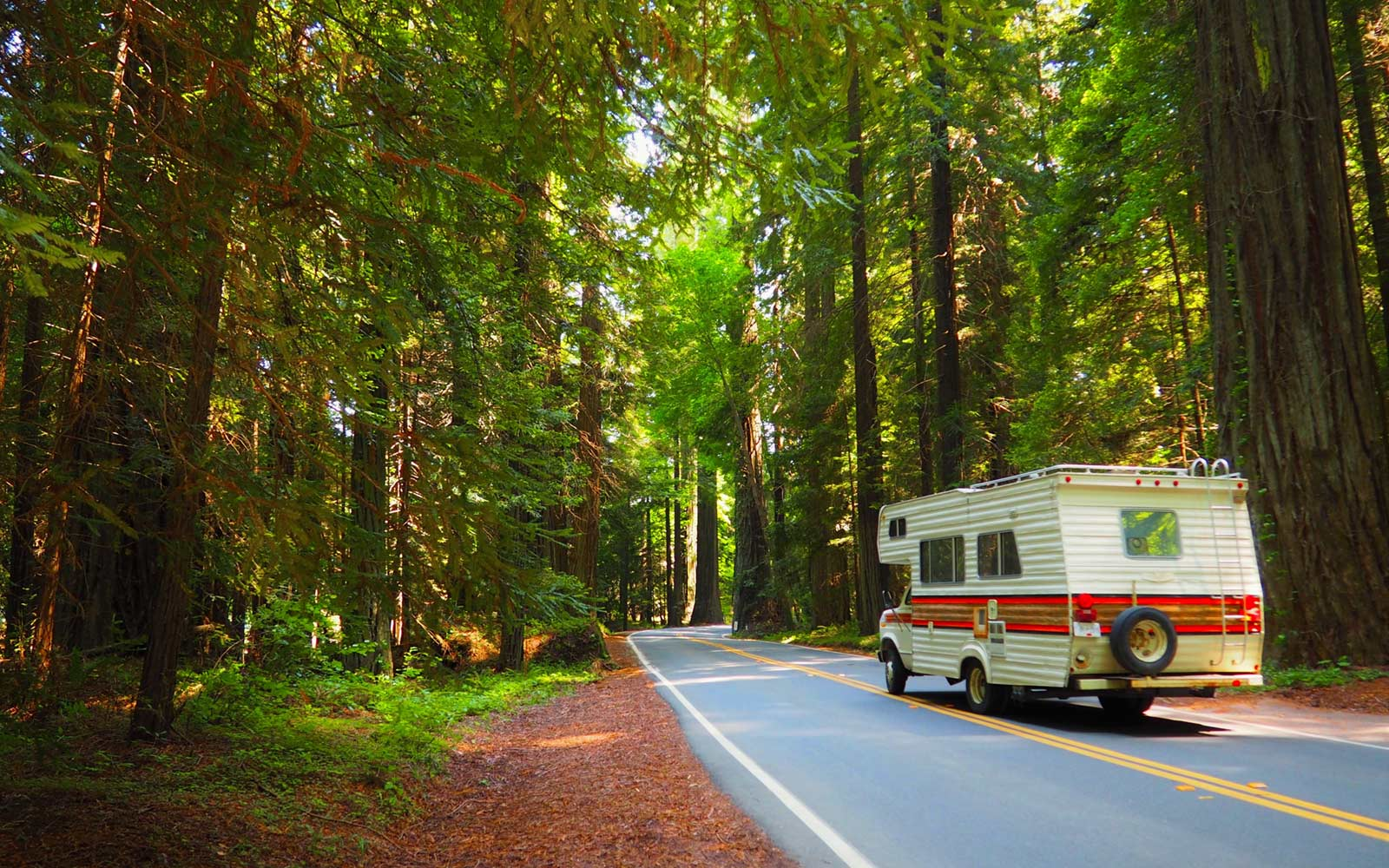 Recreational vehicle, Redwood National Forest, California