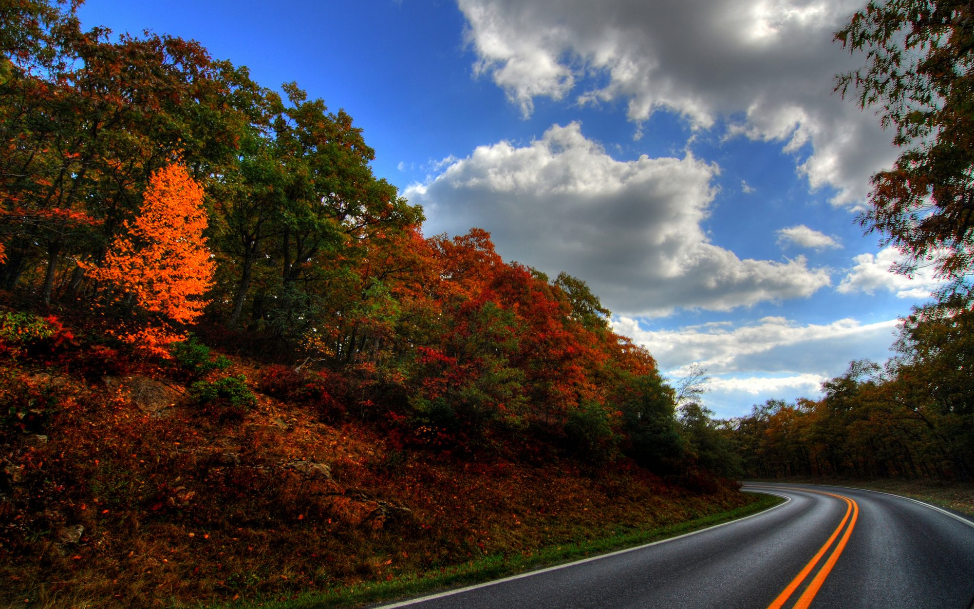 Driving in Virginia to see the foliage, along Skyline Drive.