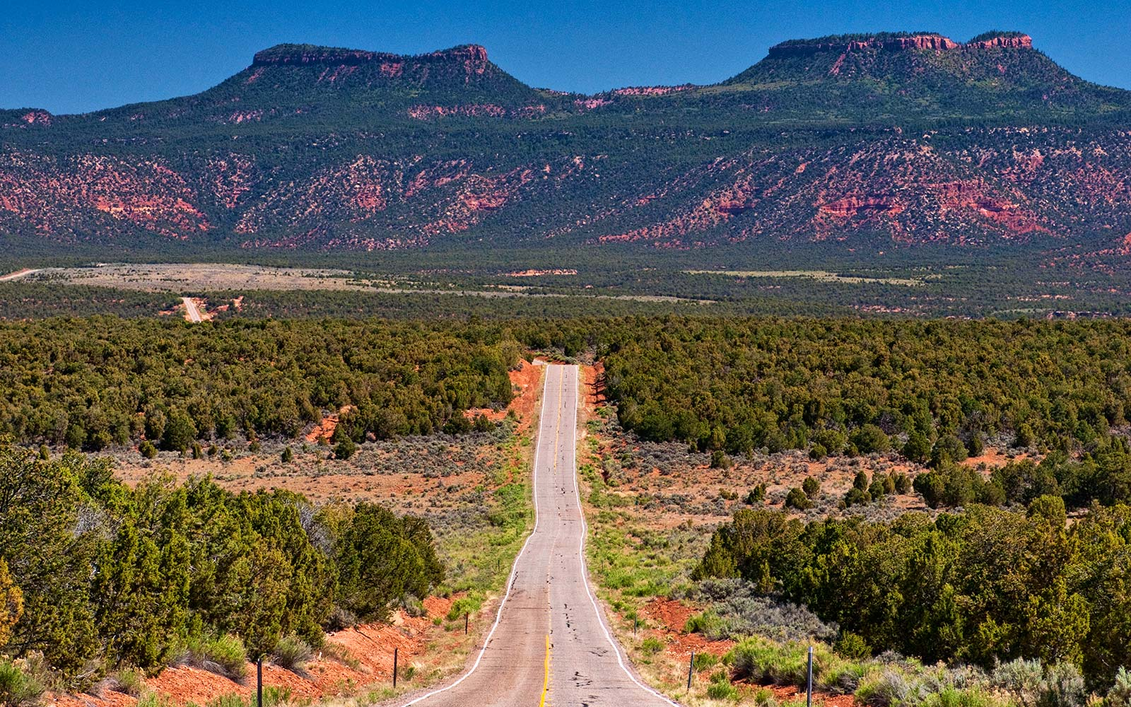 Bears Ears National Monument Utah