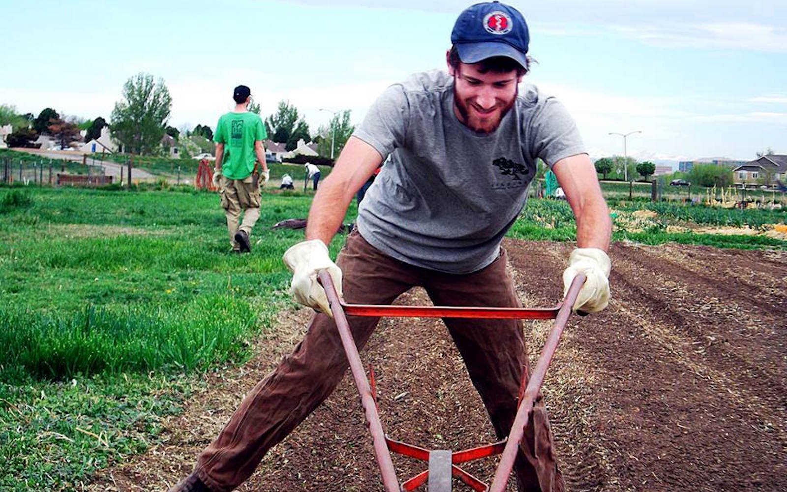 A farmer tends to the field at Raisin' Roots Farm in Fort Collins