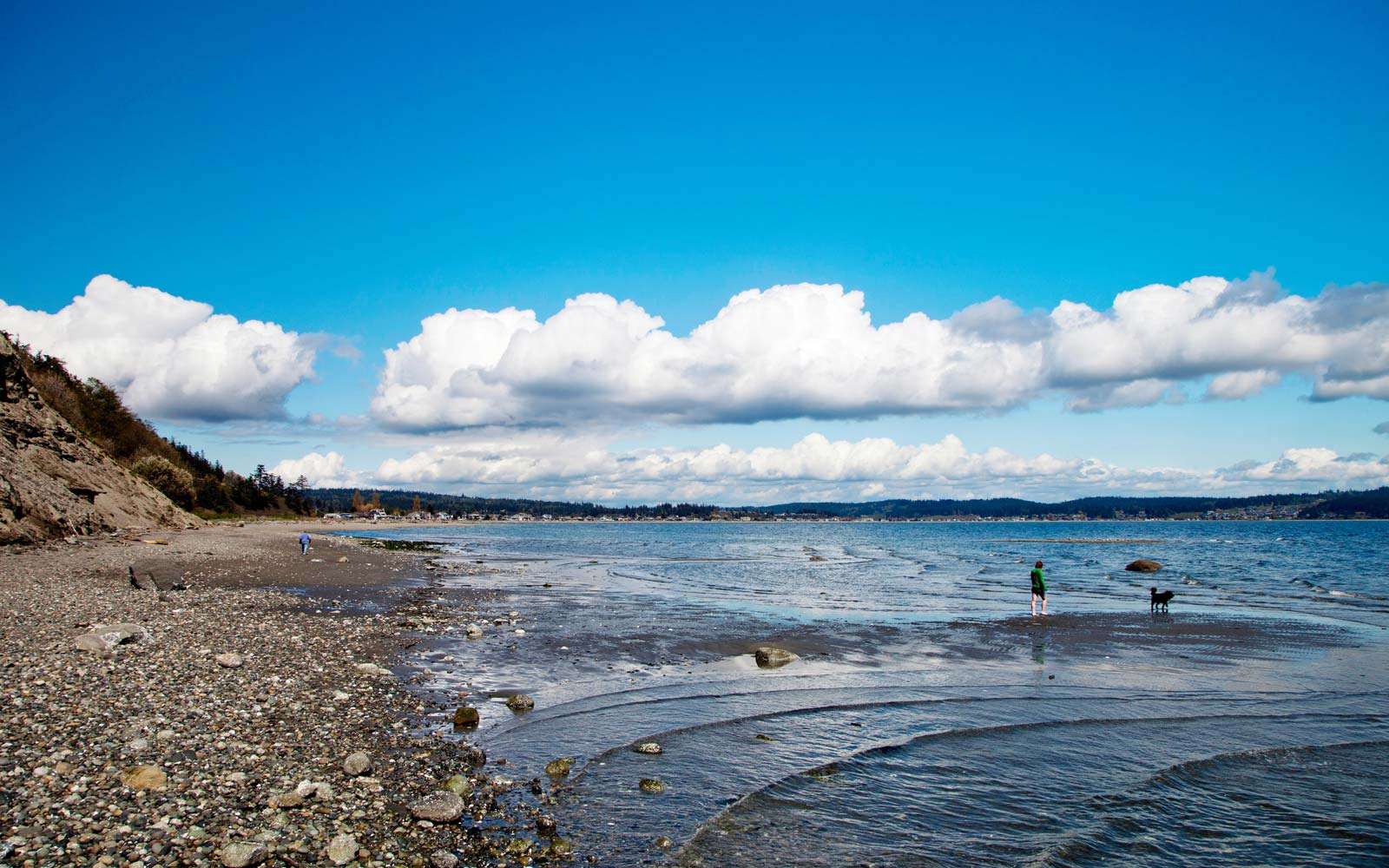 Double Bluff Beach on Whidbey Island, Washington