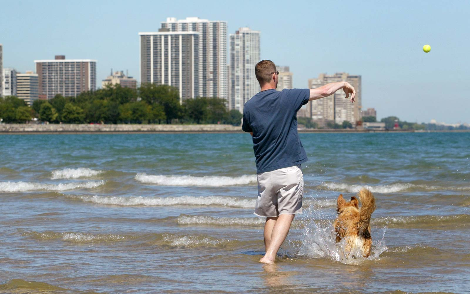 Montrose Dog Beach, Chicago, Illinois