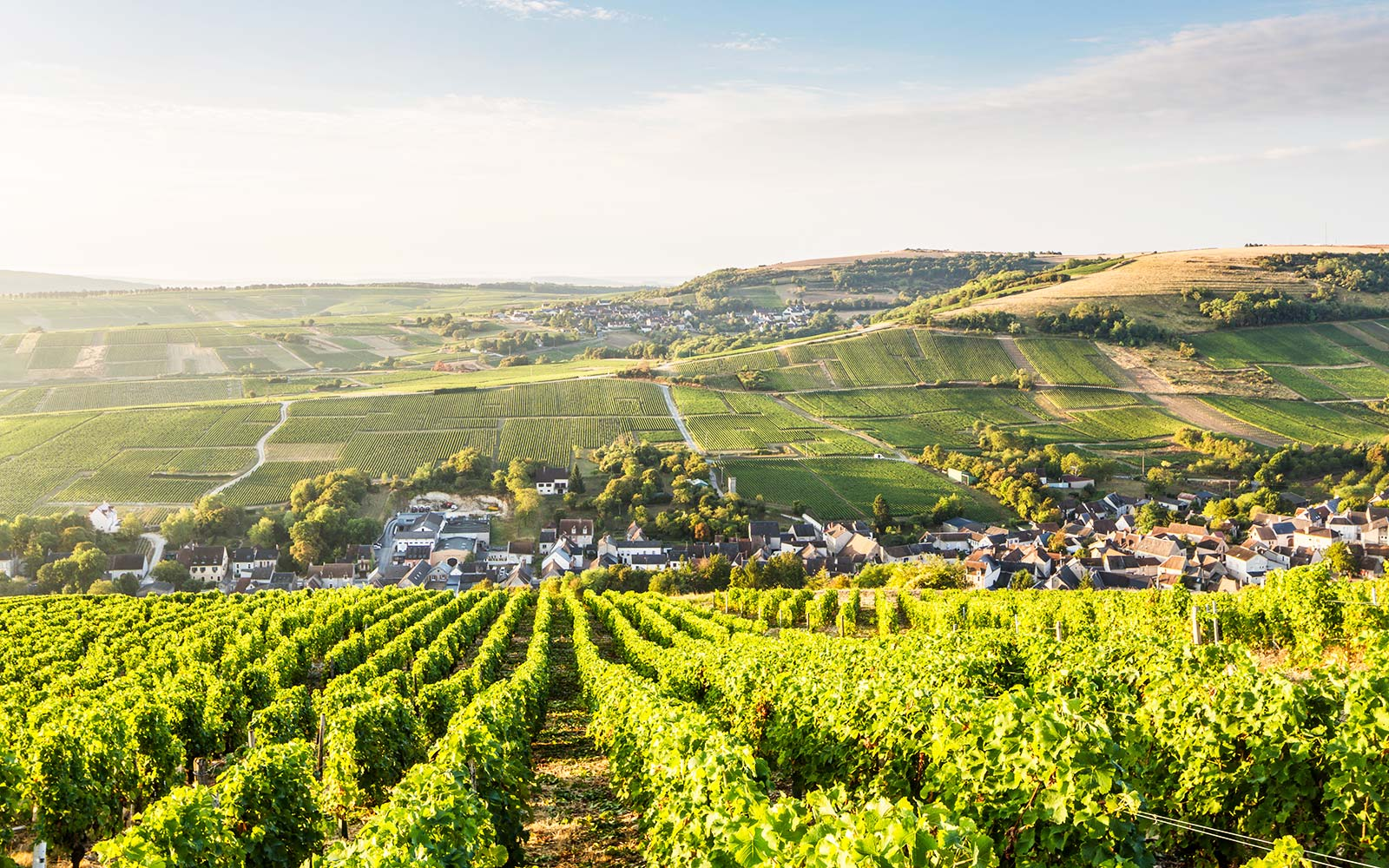 Sancerre France Vineyards Europe