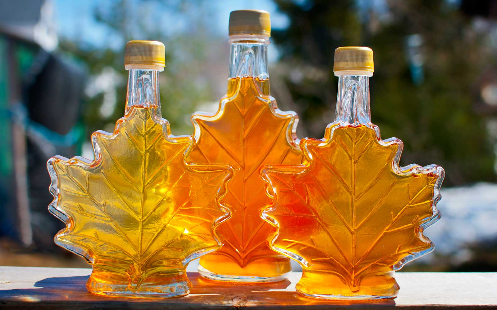 Three bottles of maple syrup made by a backyard hobbyist in Nova Scotia.