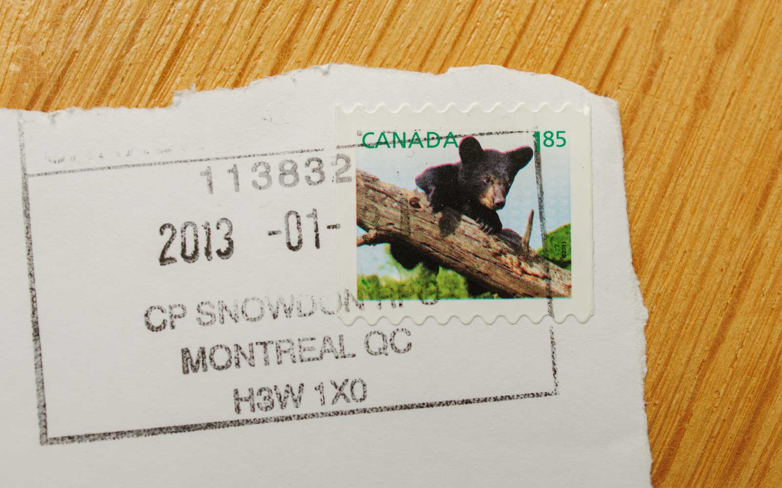 Franked postage stamp with Canadian bear issued by Canada Post