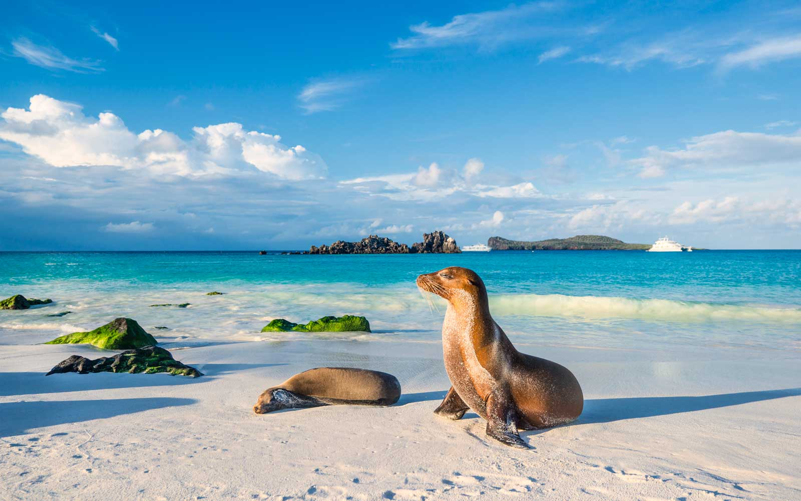 Paris Accords Will Protect The Galapagos Islands