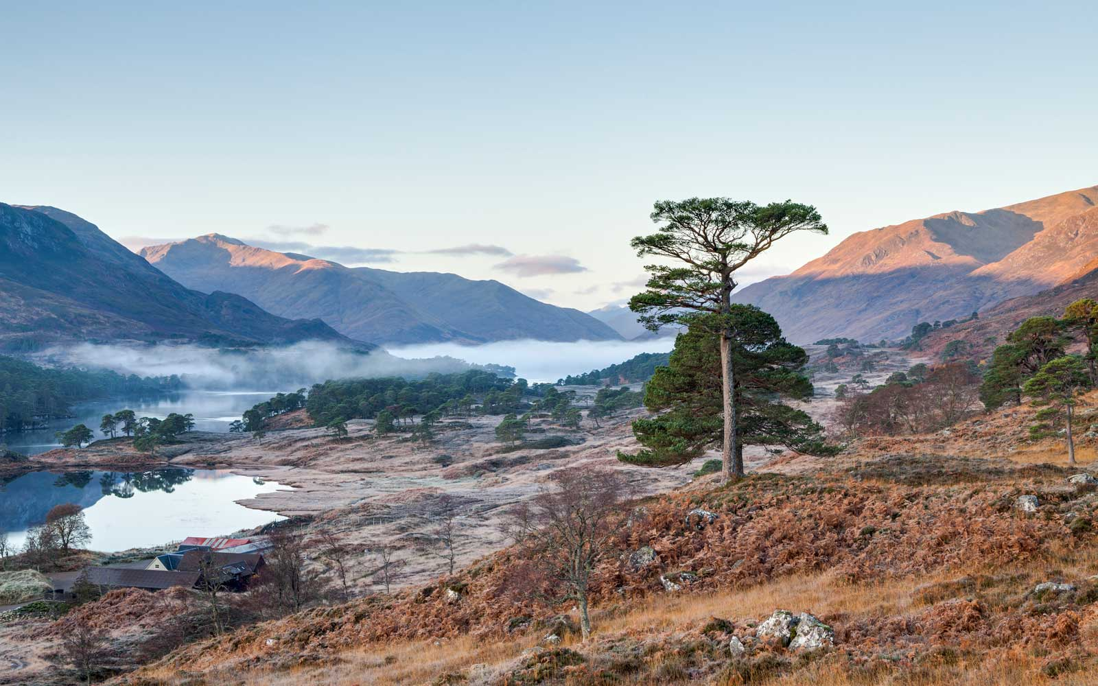 Glen Affric in Scotland
