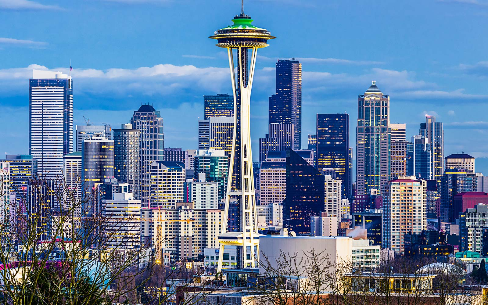 Seattle Space Needle and the downtown skyline