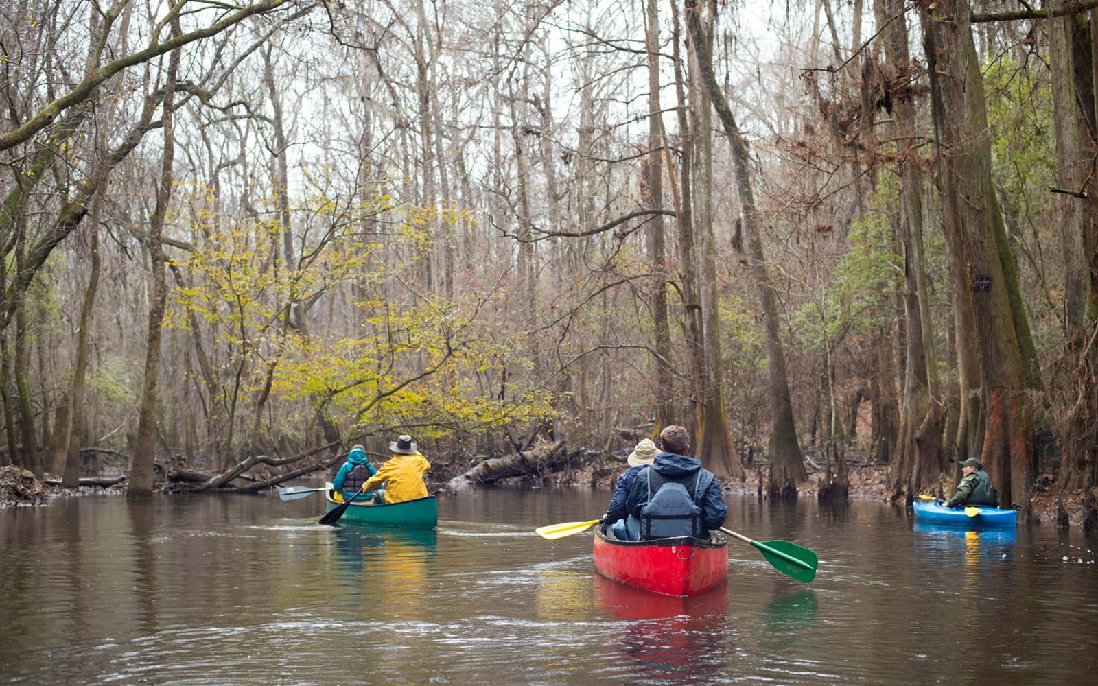 Cruise in a Kayak or Canoe