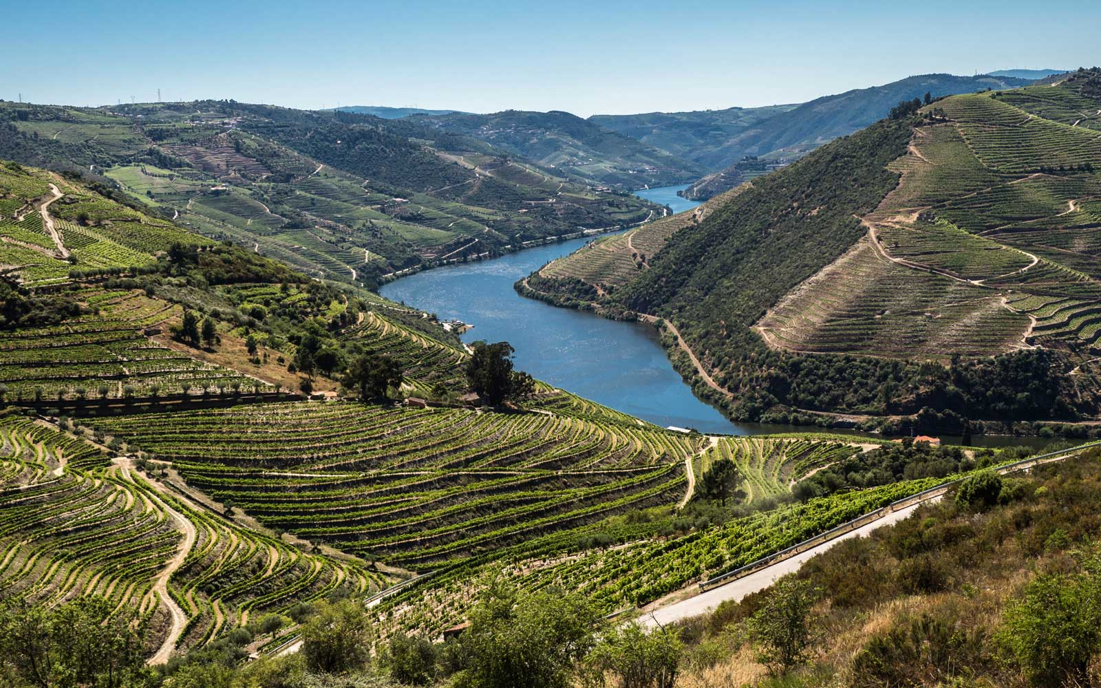 Douro Valley Portugal Wine Regions
