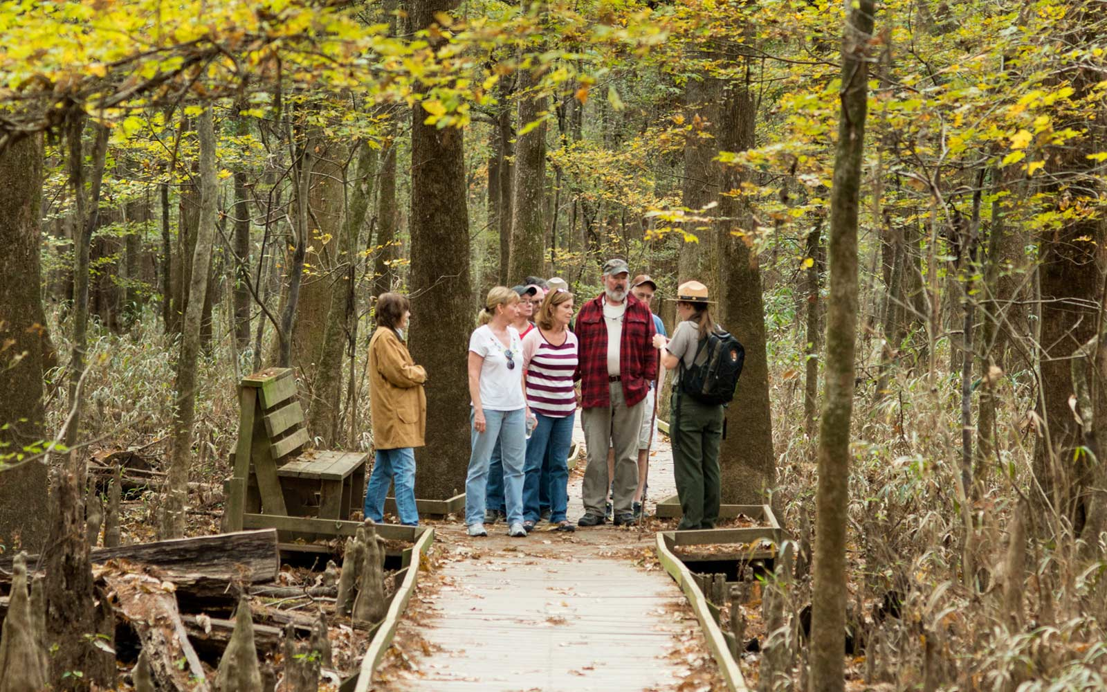 Nature Discovery Walk, Congaree National Park, South Carolina