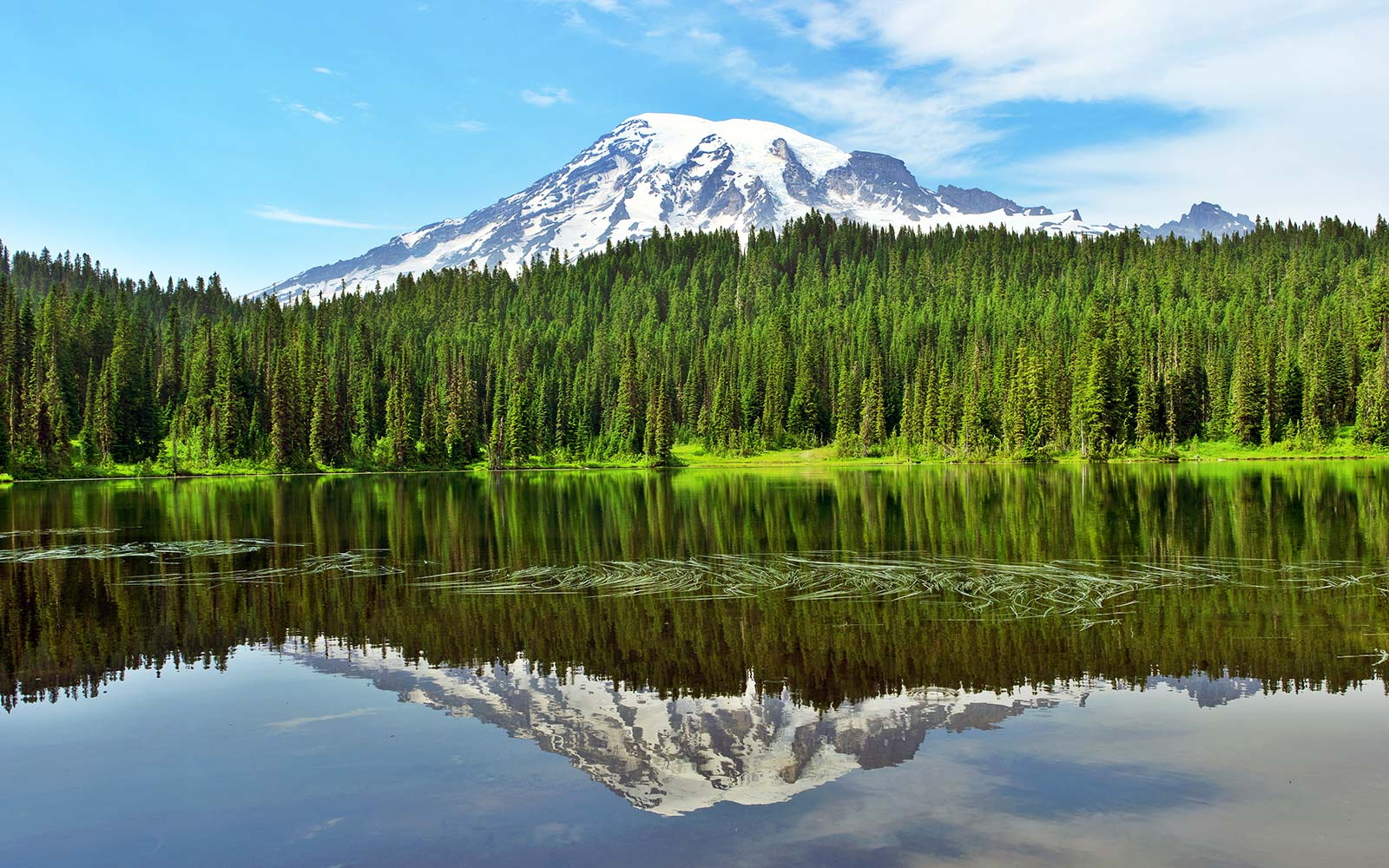 Reflection Lake with Mt.Rainier Seattle Washington