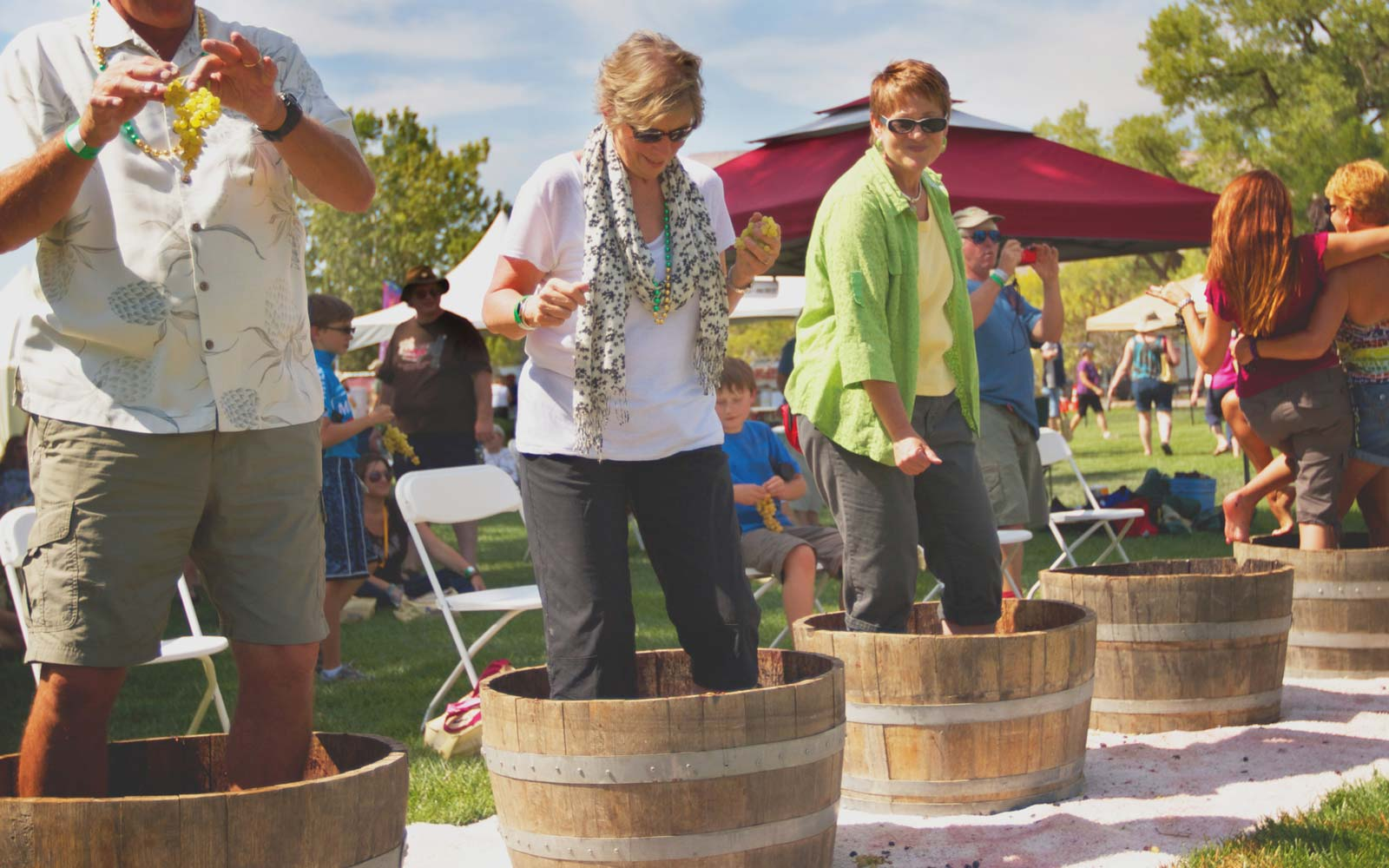 Colorado Wine Festival