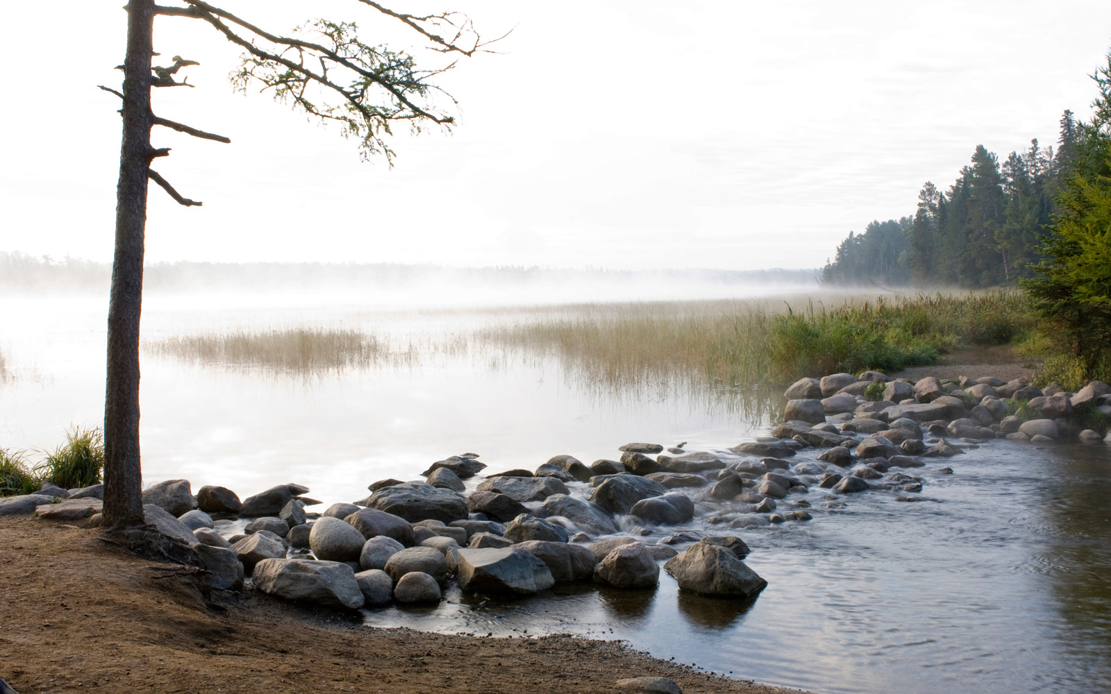 The headwaters of the Mississippi River are clearly defined by a 44-foot-long (13 m) long outlet dam at the north end of Lake Itasca. This setup allows tourists to wade in shallow water or walk across the rocks connecting the sides of the Mississippi. The