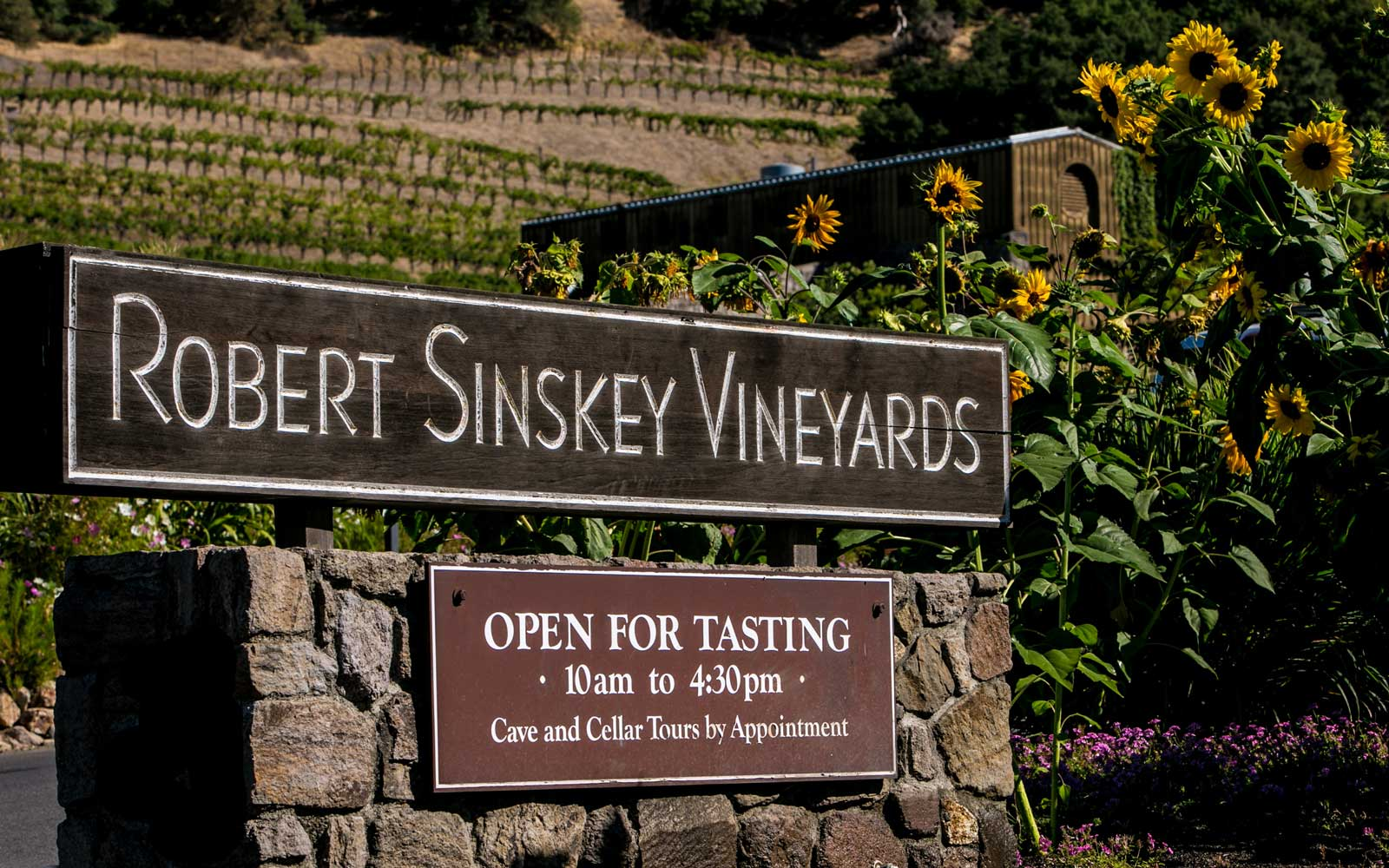 Robert Sinskey Vineyard