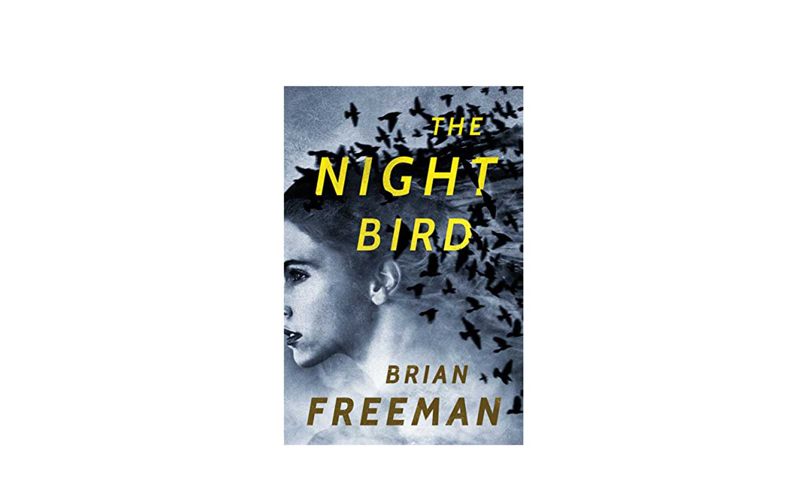 20 most popular Kindle books 2017 The Night Bird