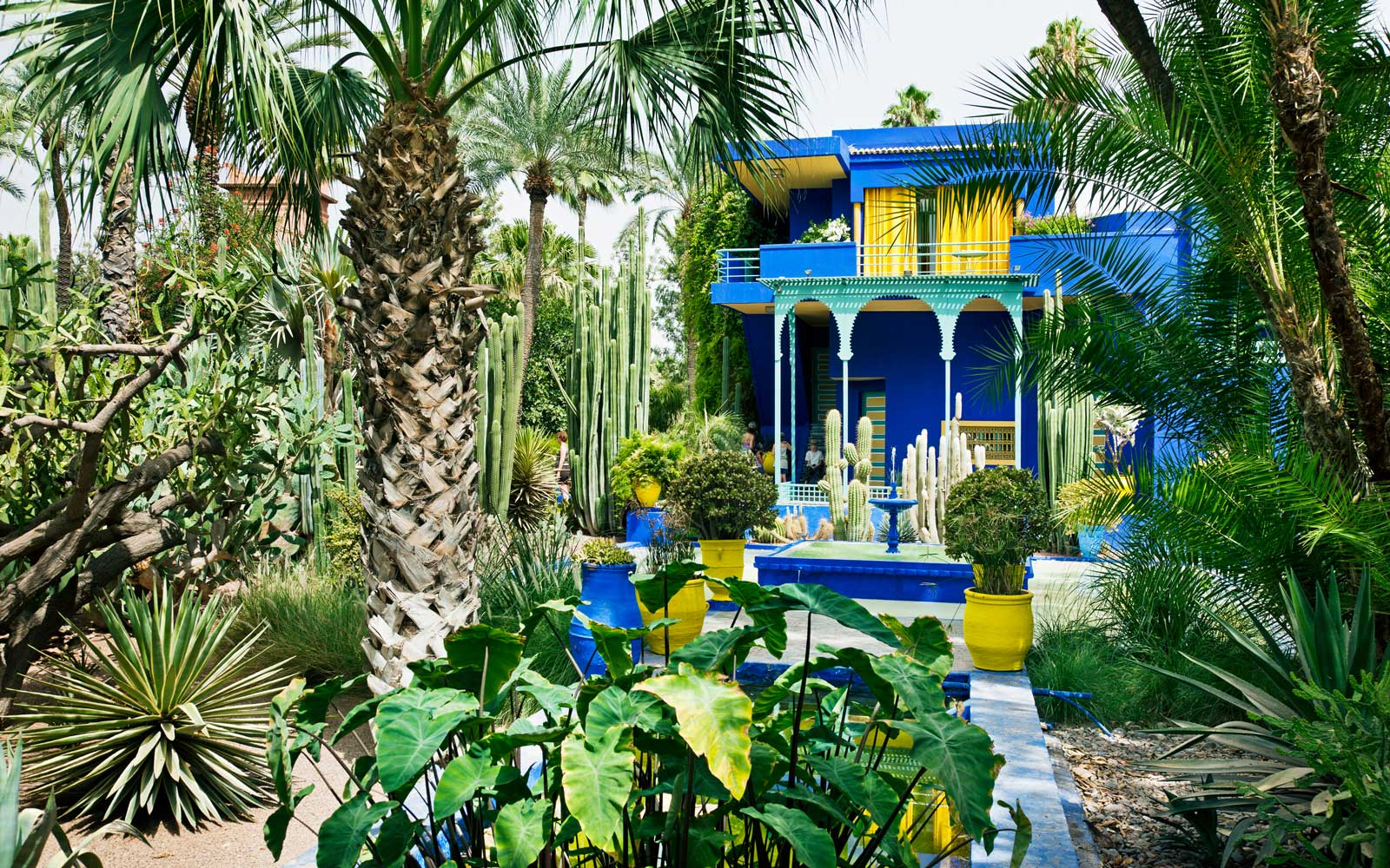 The colorful Jardin Majorelle, in Marrakech, Morocco
