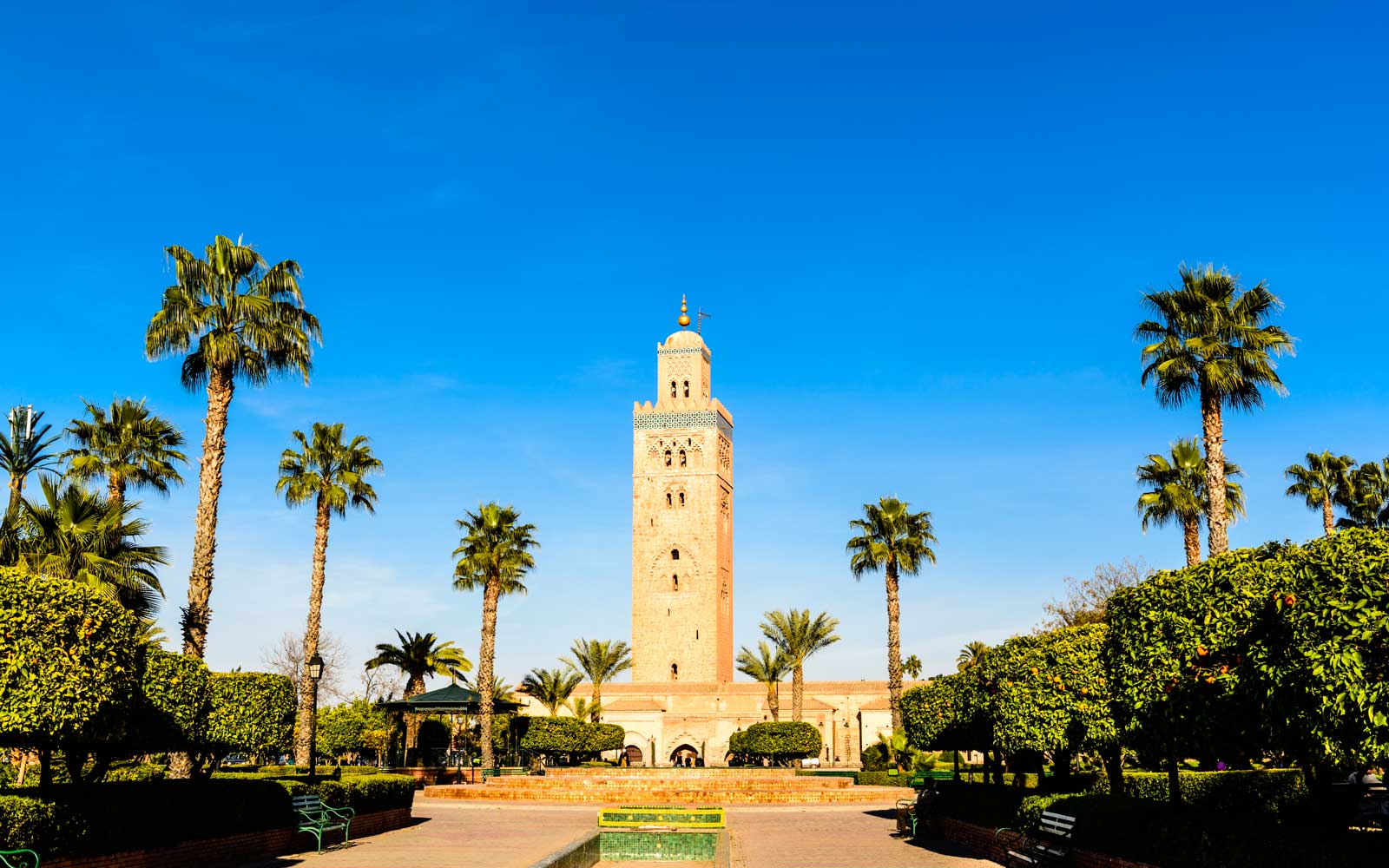 Morocco, Marrakech is know for its bright light, palm trees, and great weather