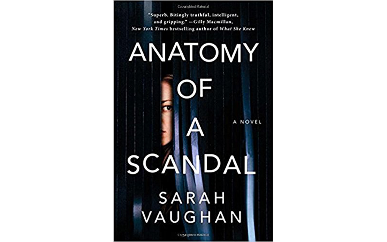 'Anatomy of a Scandal' by Sarah Vaughan