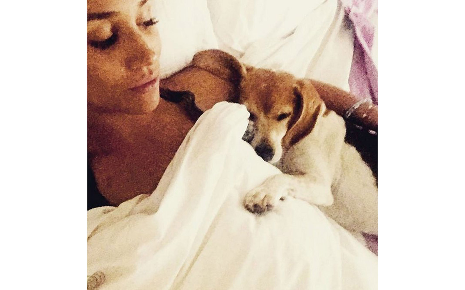 Meghan Markle cuddling with Bogart and Guy