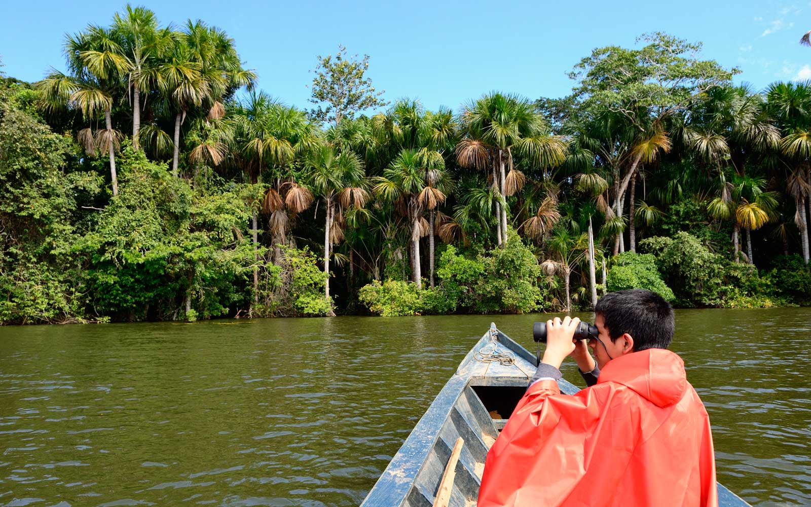 Tambopata National Park in Peru (approaching by boat)