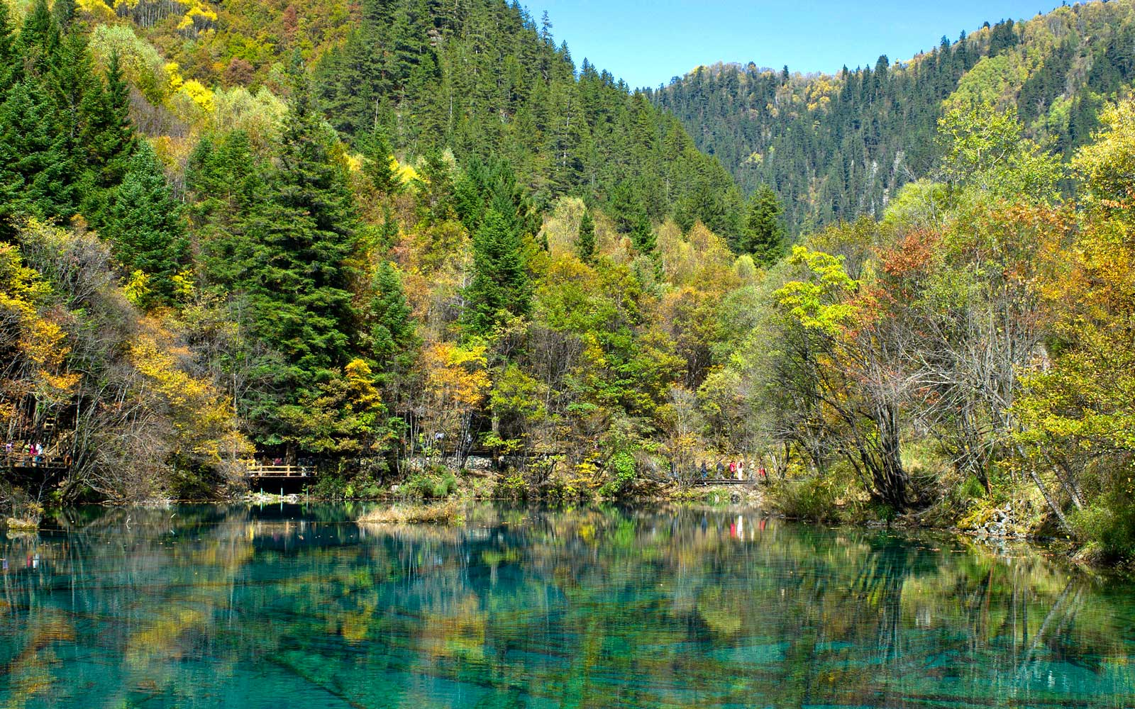 Five-Flower Lake, Jiuzhaigou National Park, China