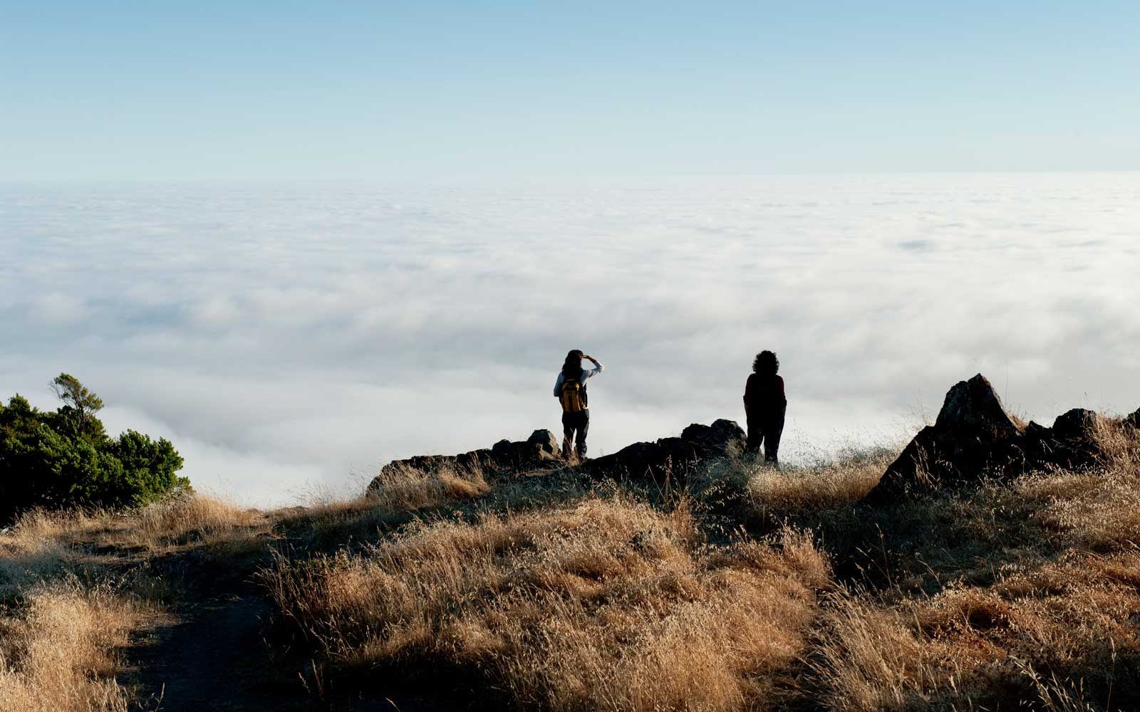 Hikers overlooking fog covered Pacific Ocean, Mt Tamalpais State Park.