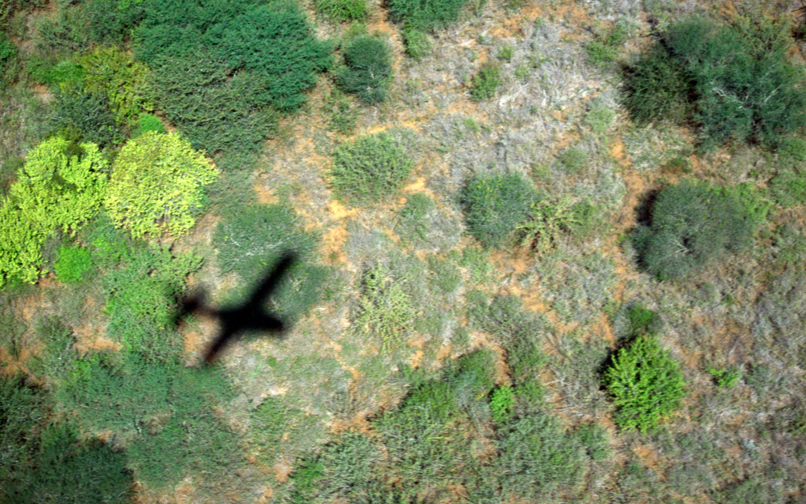 Airplane flying over the landscape in Tanzania