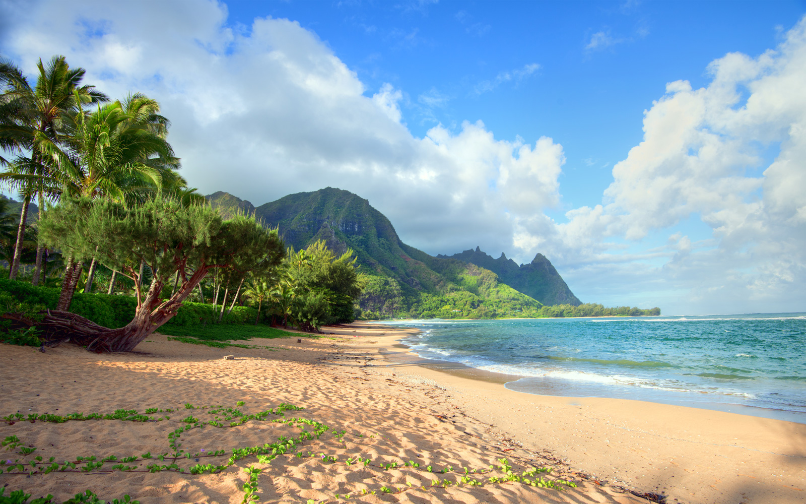 The north shore in Haena in Kauai.