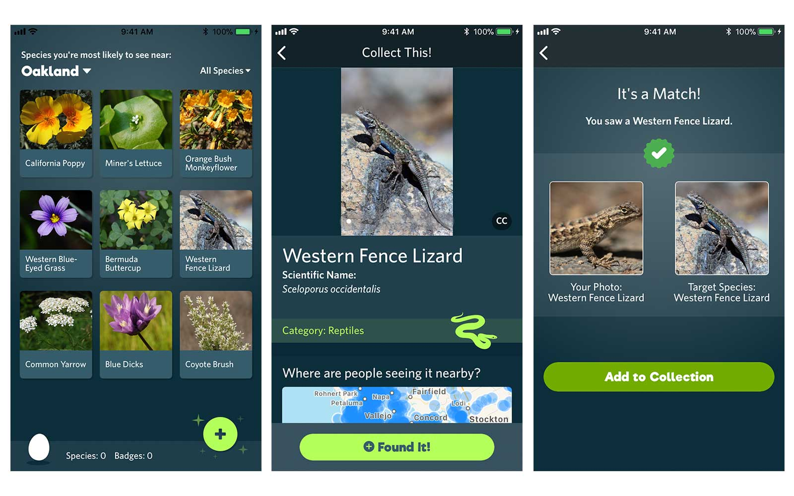 Screenshots of the SEEK app to identify flora and fauna