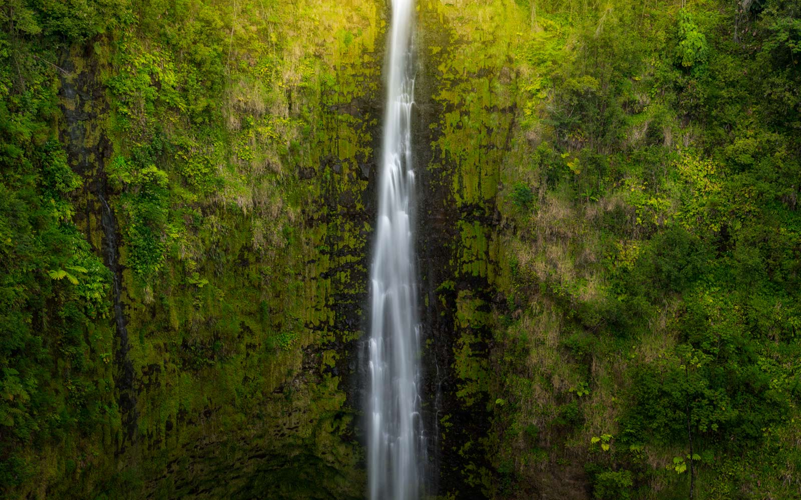 Asaka Falls, Big Island, Hawaii